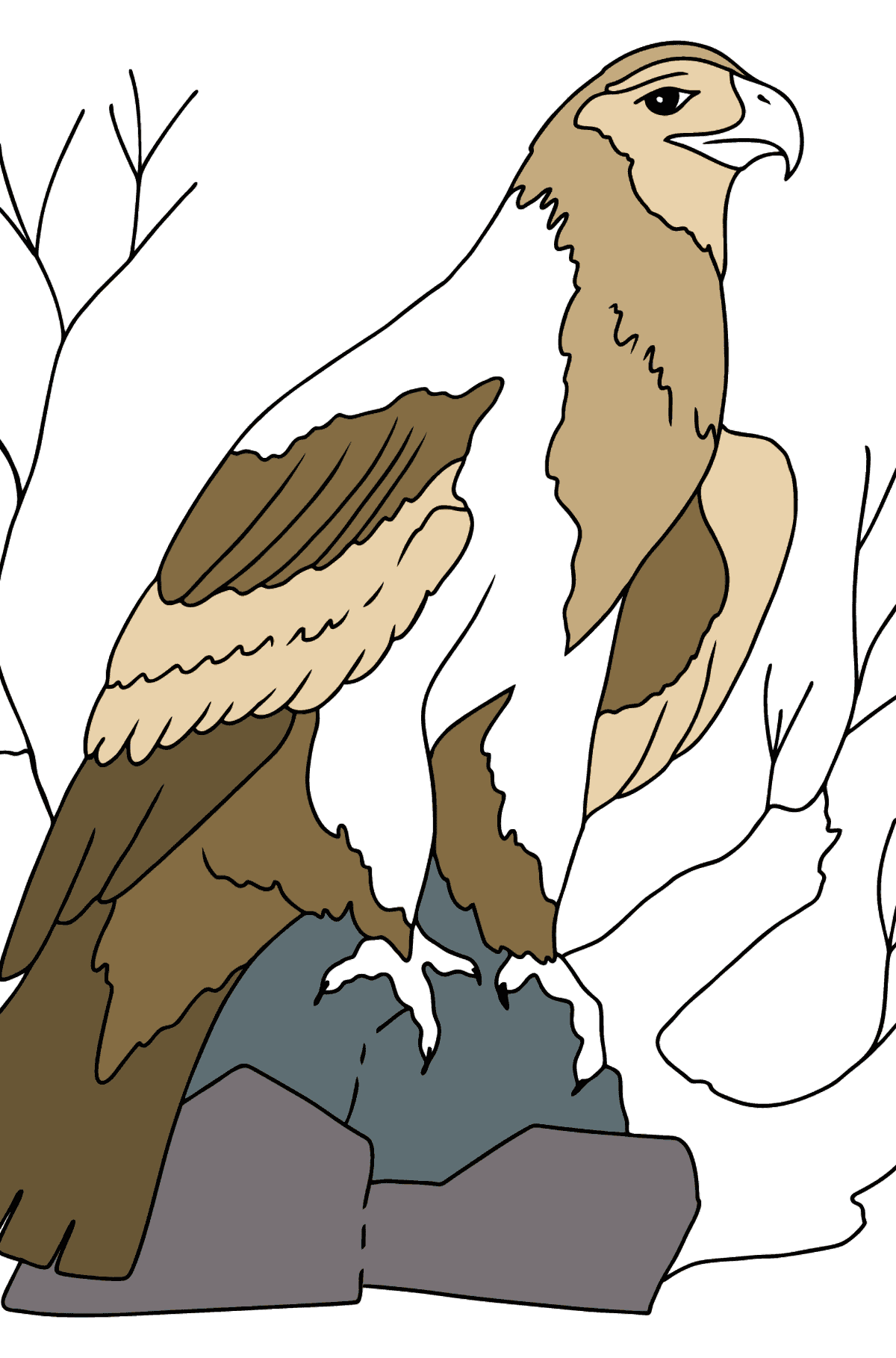 Coloring Page - An Alpine Eagle - Coloring Pages for Kids