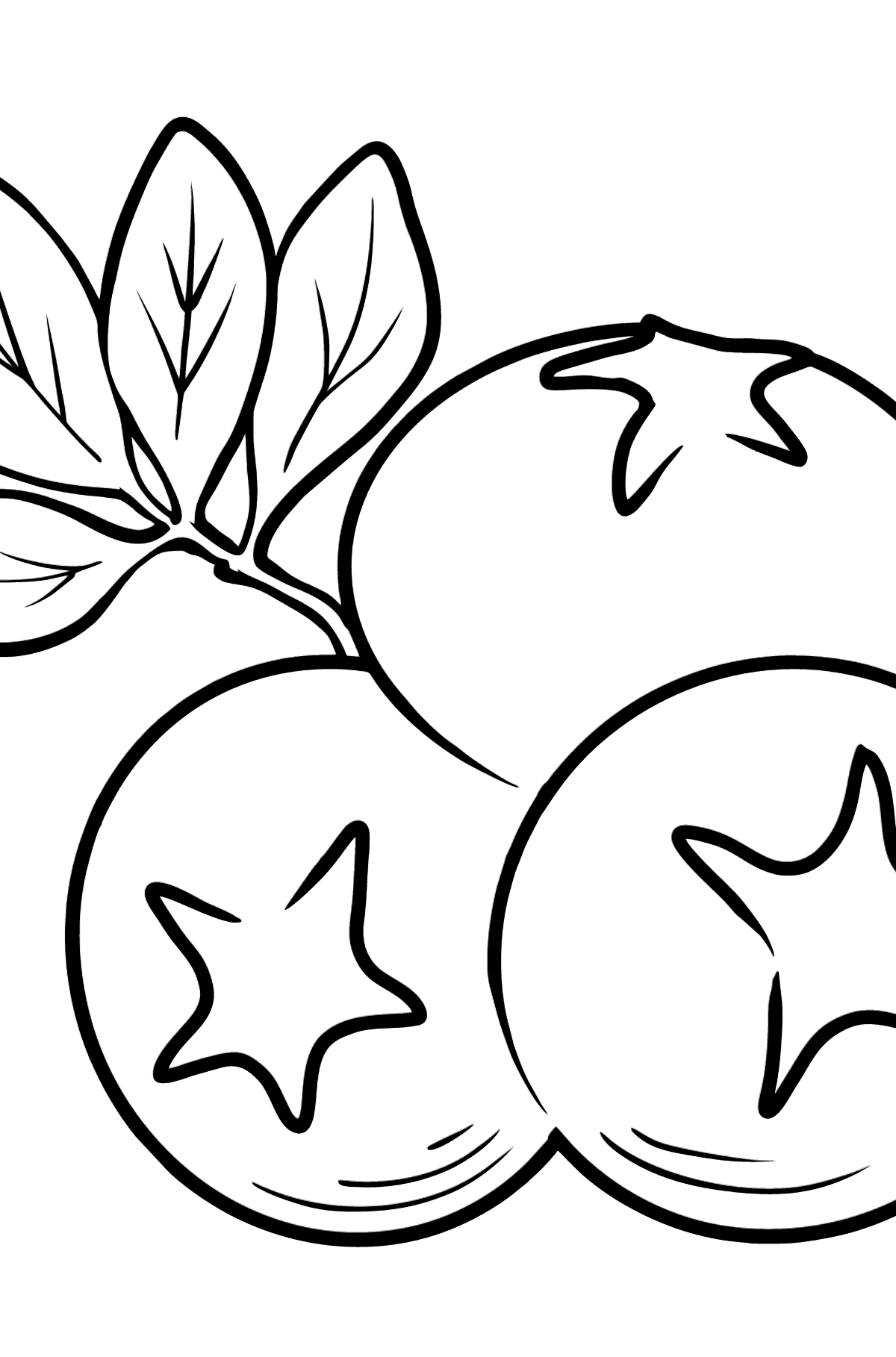Blueberry coloring page - Coloring Pages for Kids