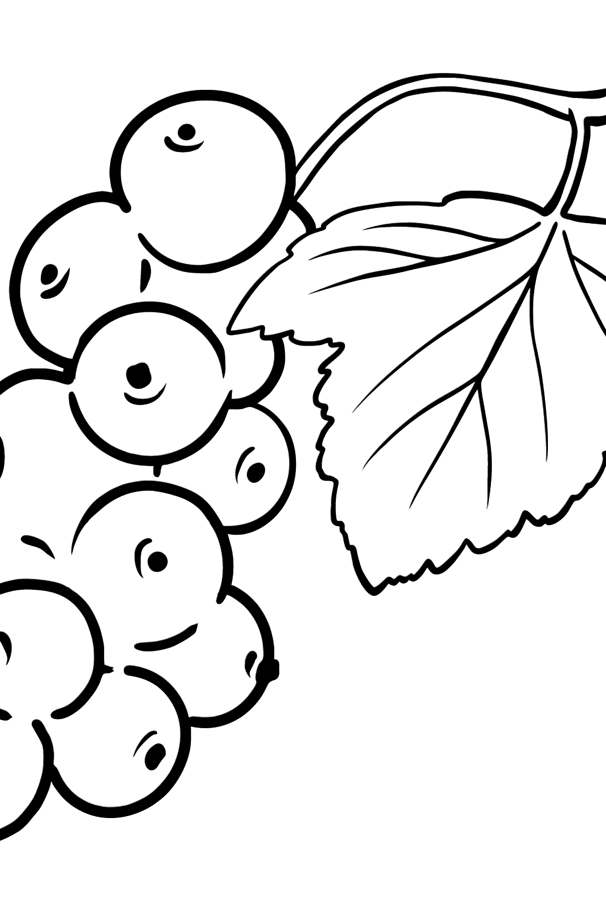 Currant coloring page - Coloring Pages for Kids