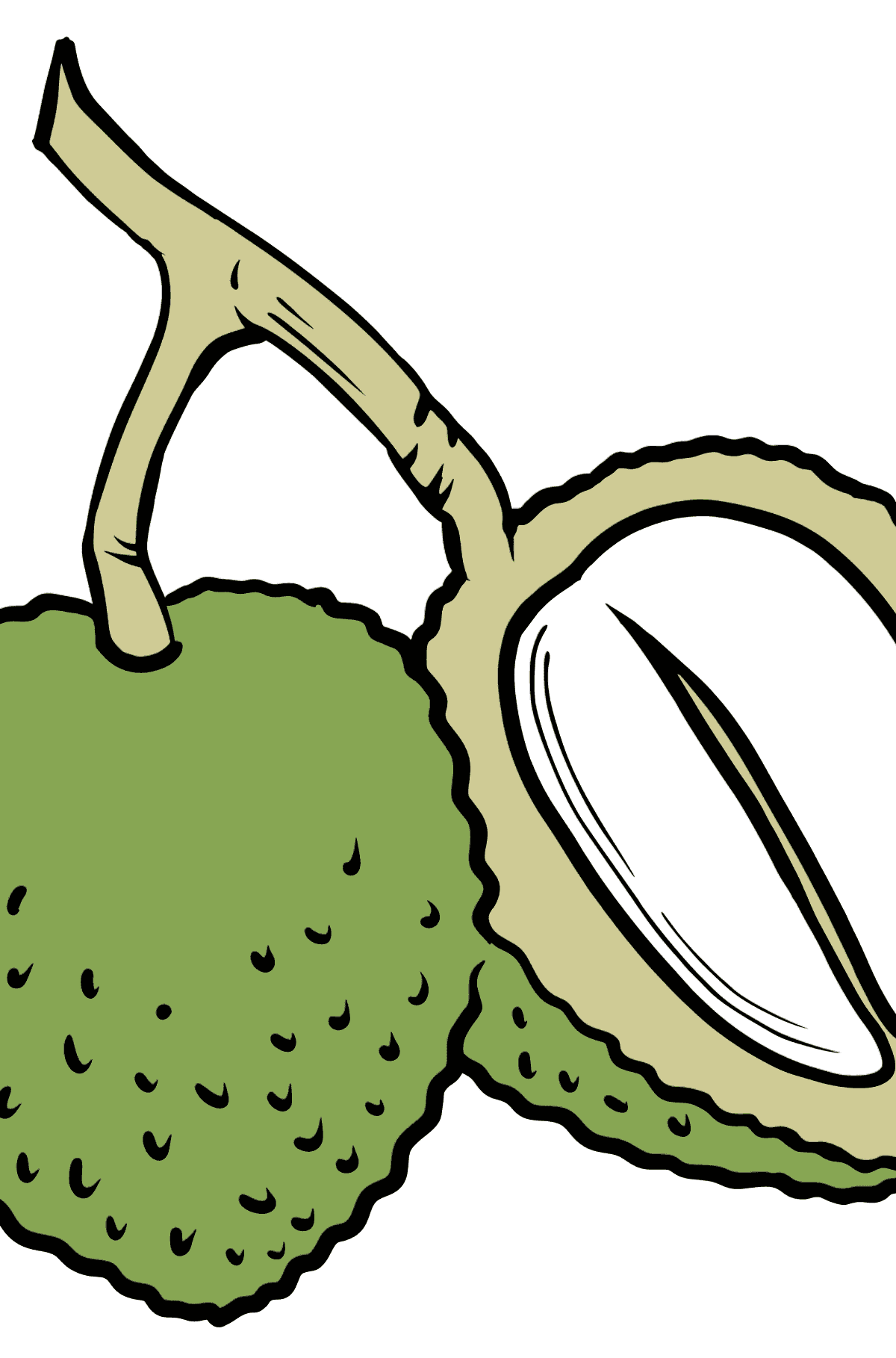 Durian coloring page - Coloring Pages for Kids