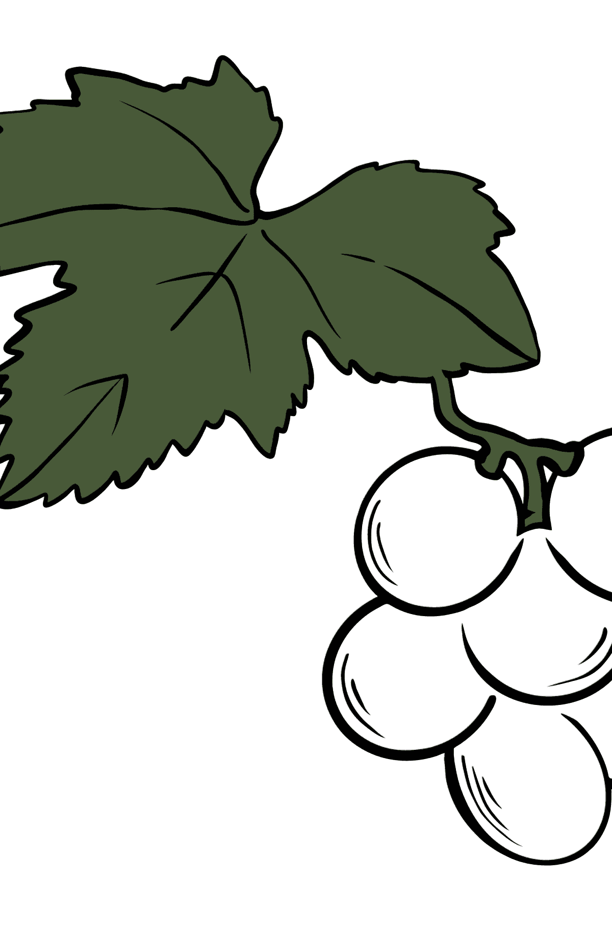 Grapes coloring page - Coloring Pages for Kids
