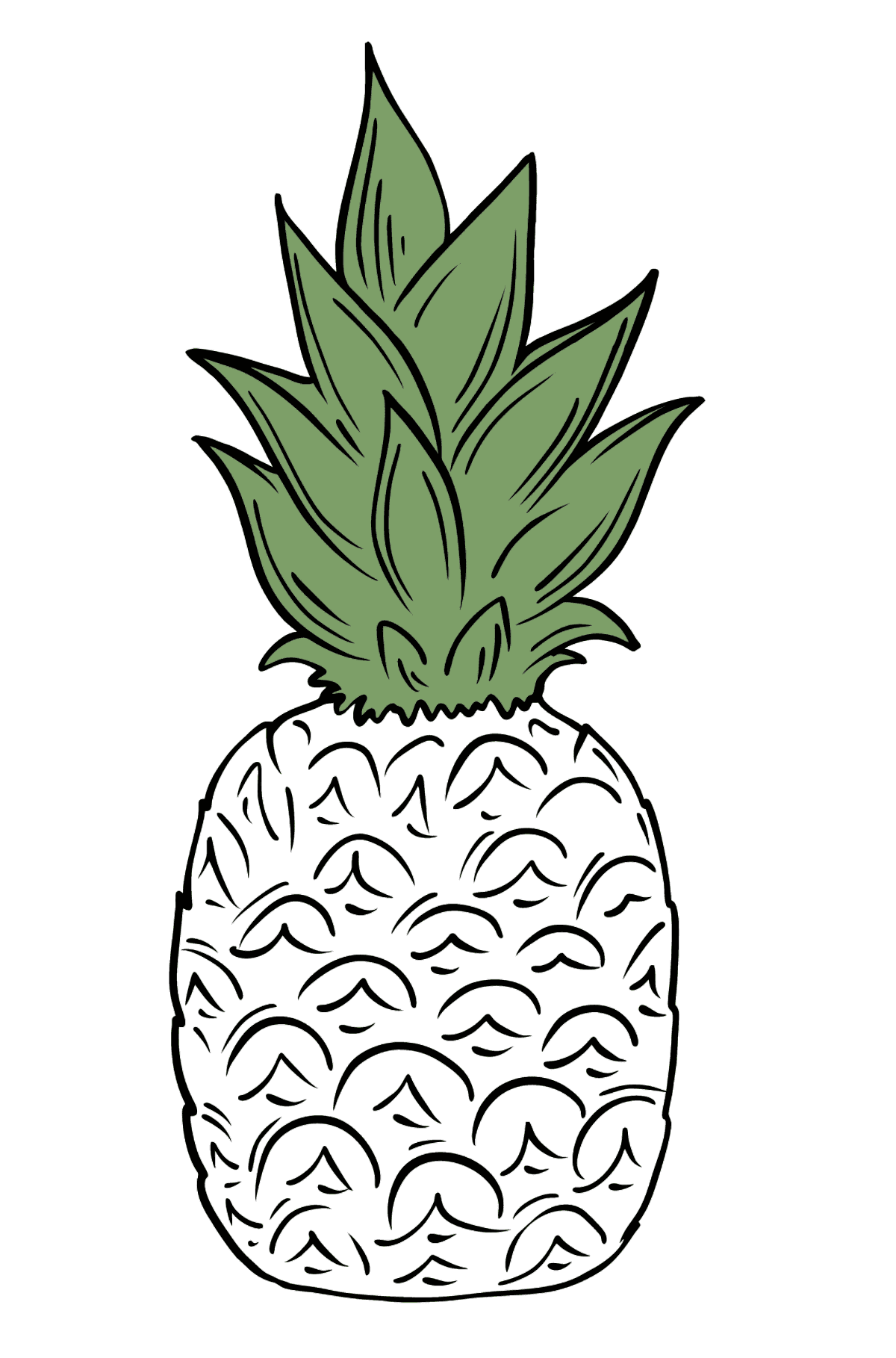 Pineapple coloring page - Coloring Pages for Kids