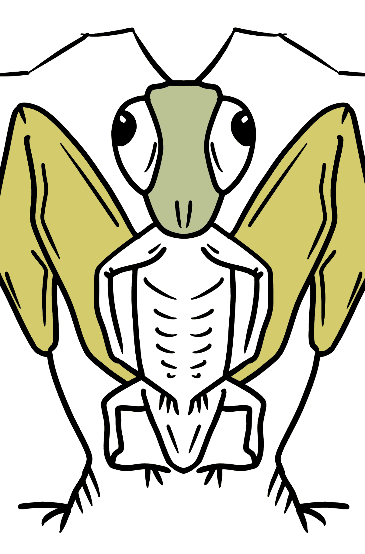 Grasshopper coloring page - Coloring Pages for Kids