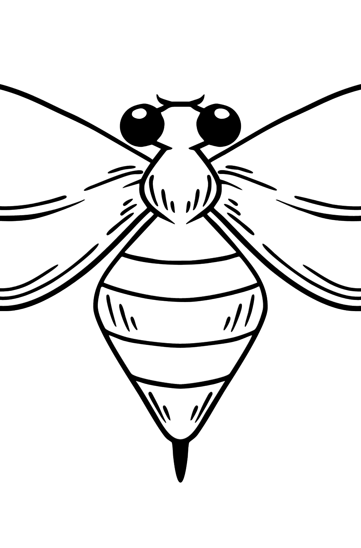 Wasp coloring page - Coloring Pages for Kids