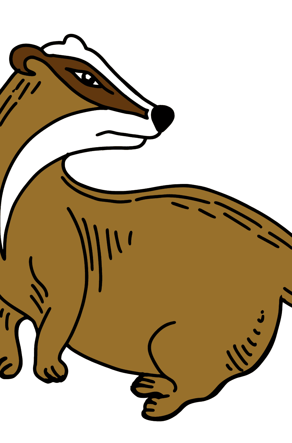 Badger coloring page - Coloring Pages for Kids