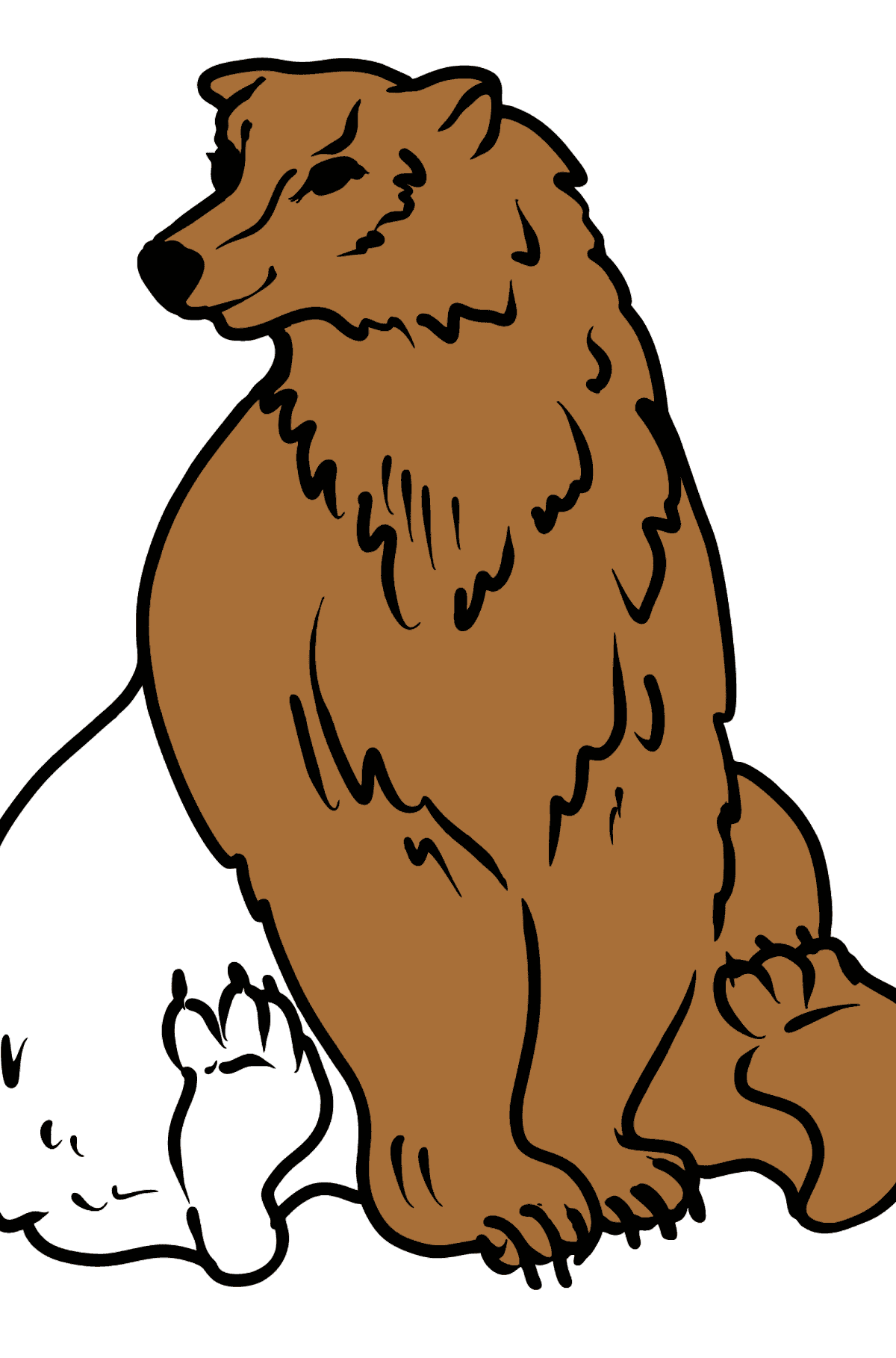 Bear coloring page - Coloring Pages for Kids