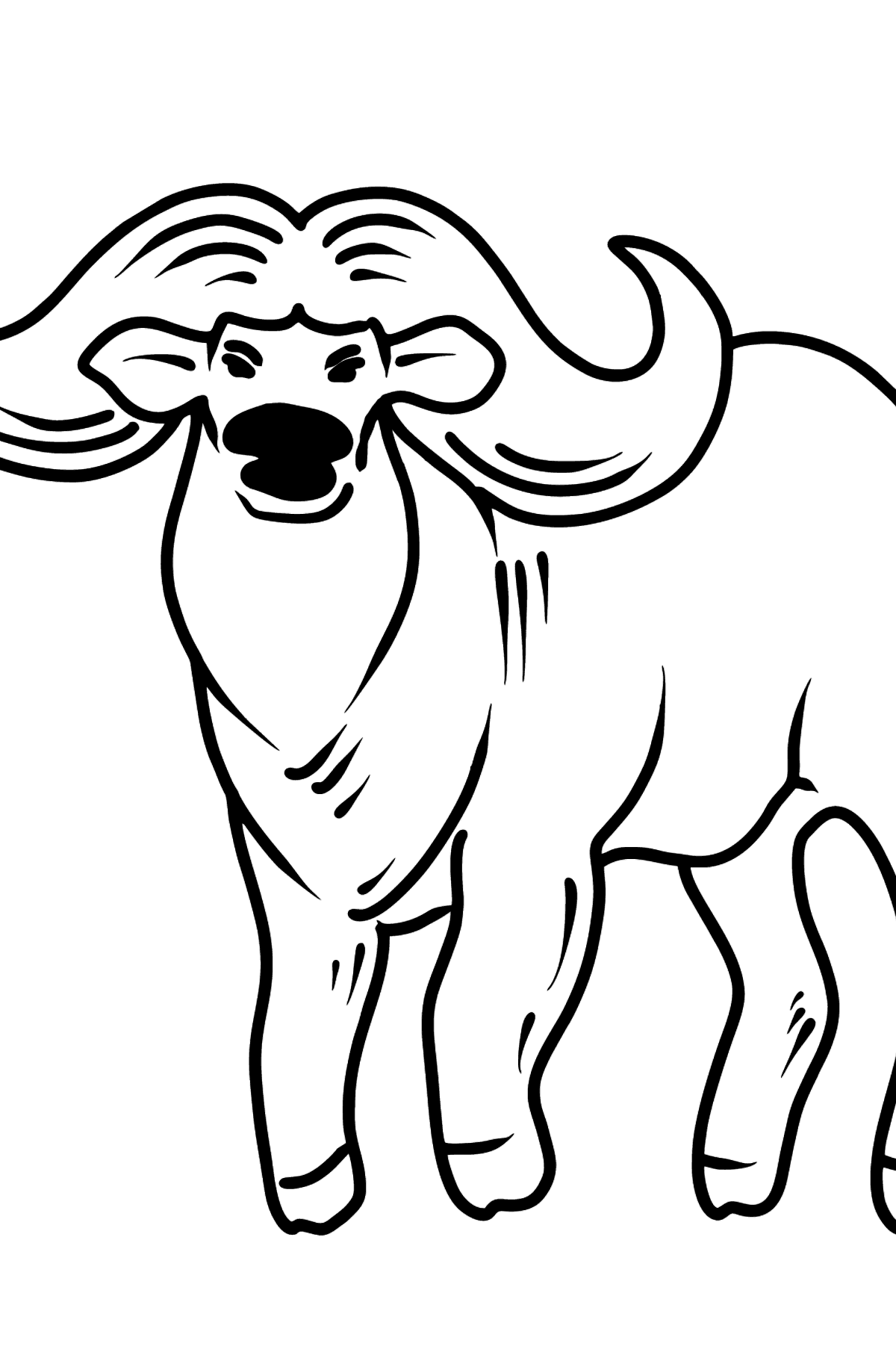 Buffalo coloring page - Coloring Pages for Kids