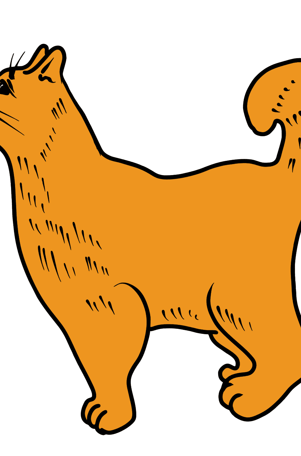 Cat coloring page - Coloring Pages for Kids