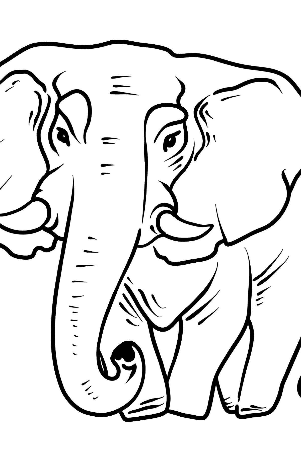 Раскраска слон - Картинки для Детей