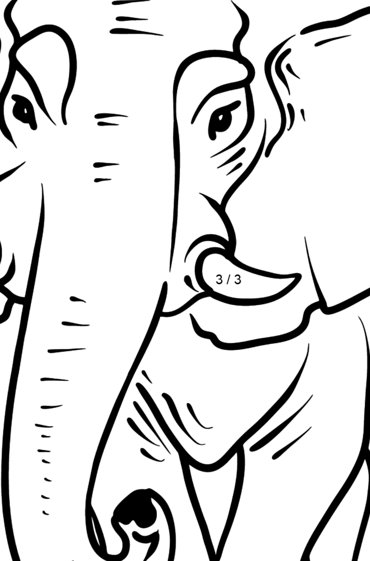 Elephant coloring page - Math Coloring - Division for Kids