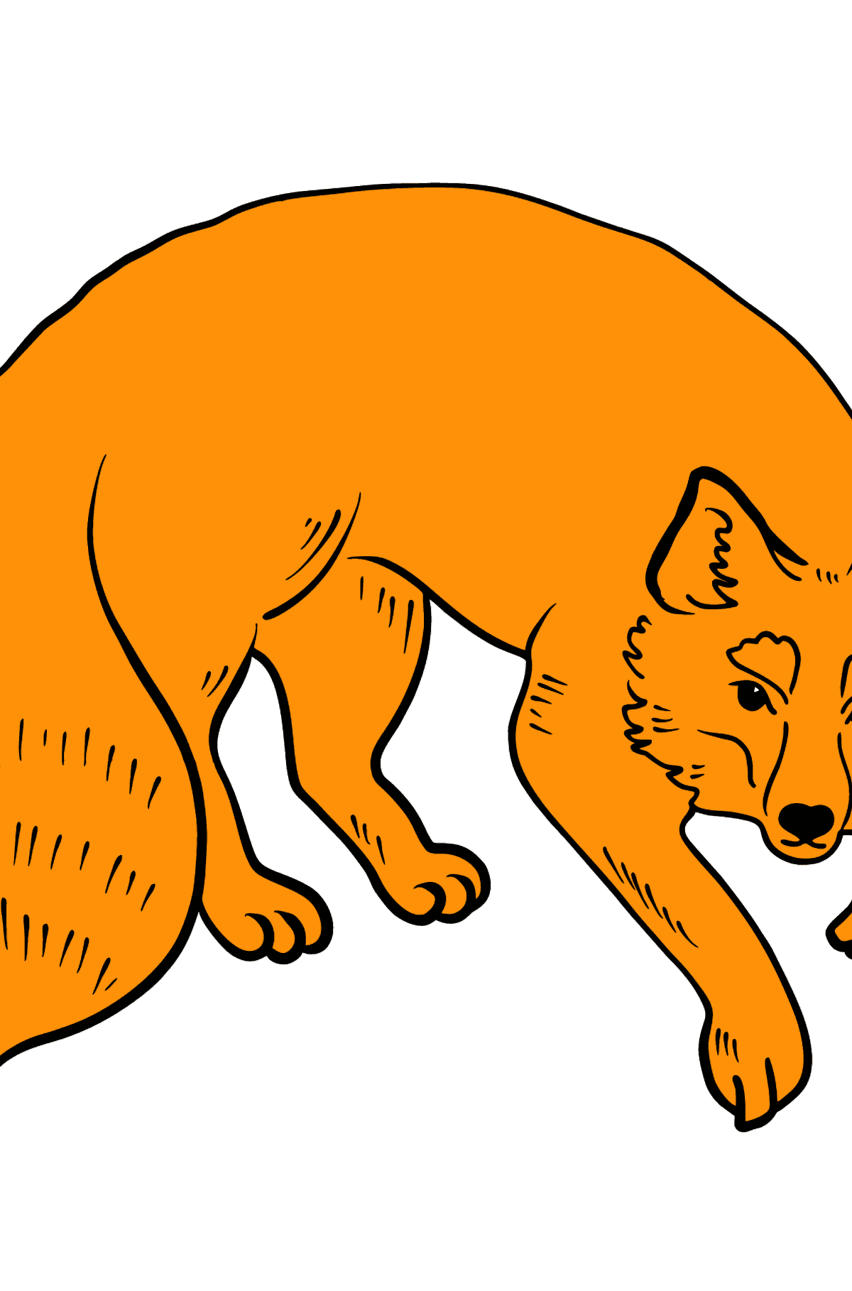 Fox coloring page - Coloring Pages for Kids