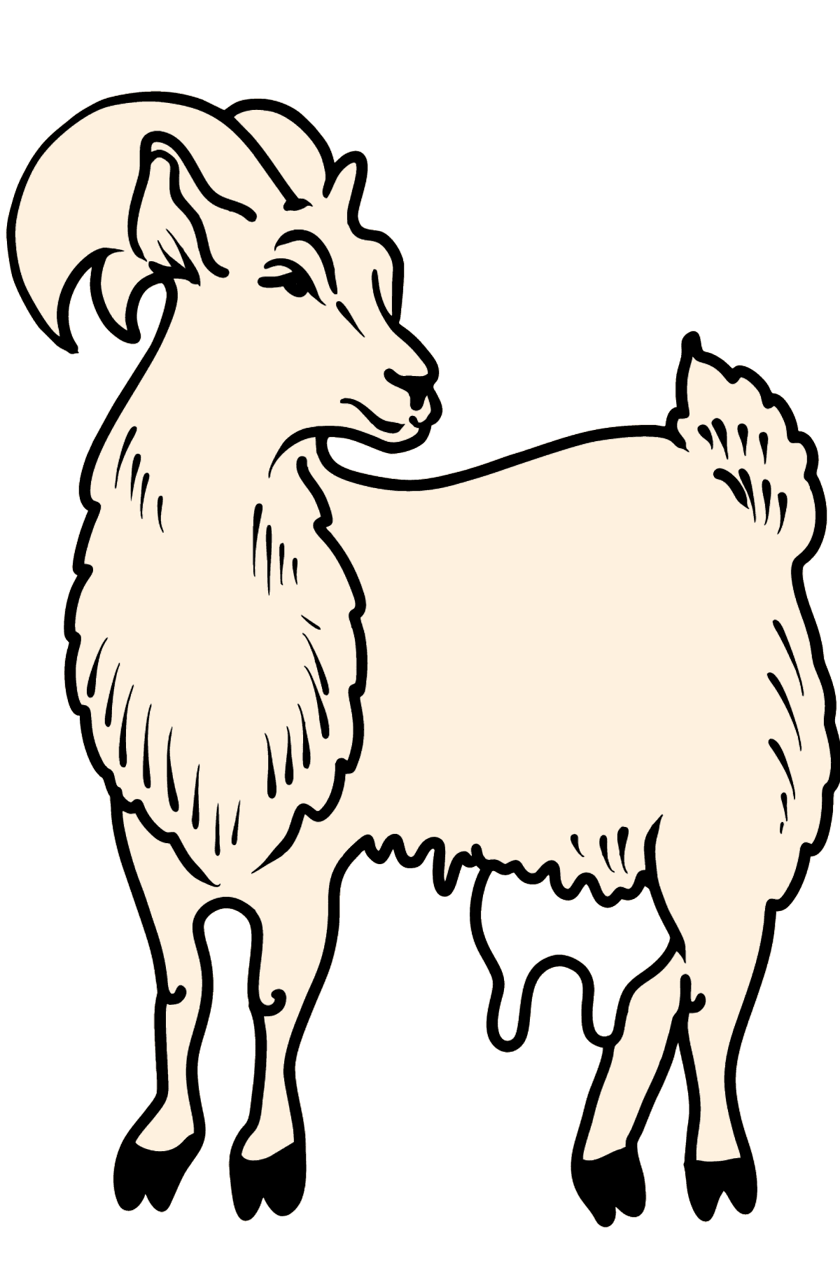 Goat coloring page - Coloring Pages for Kids