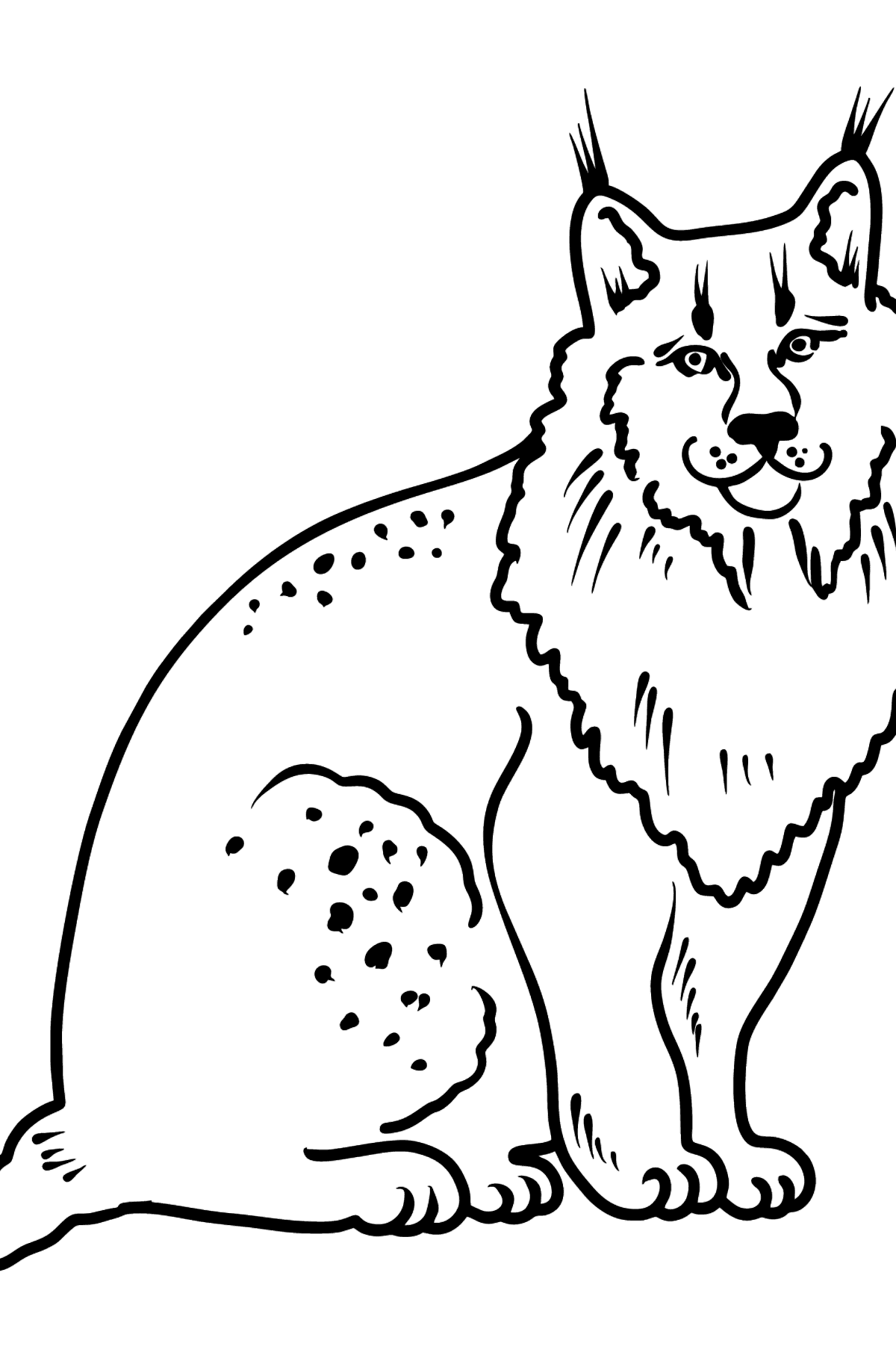 Lynx coloring page - Coloring Pages for Kids