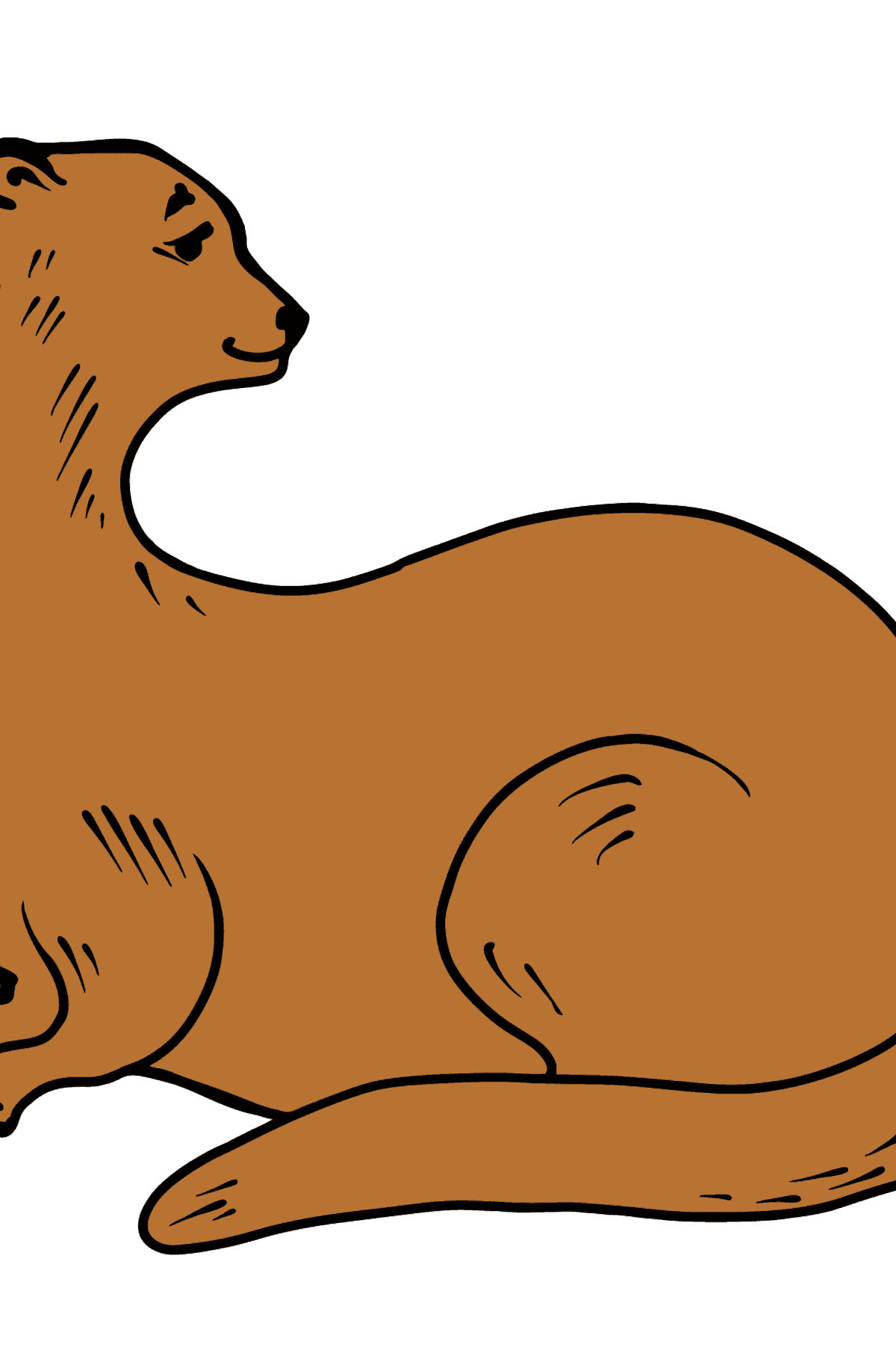Otter coloring page - Coloring Pages for Kids