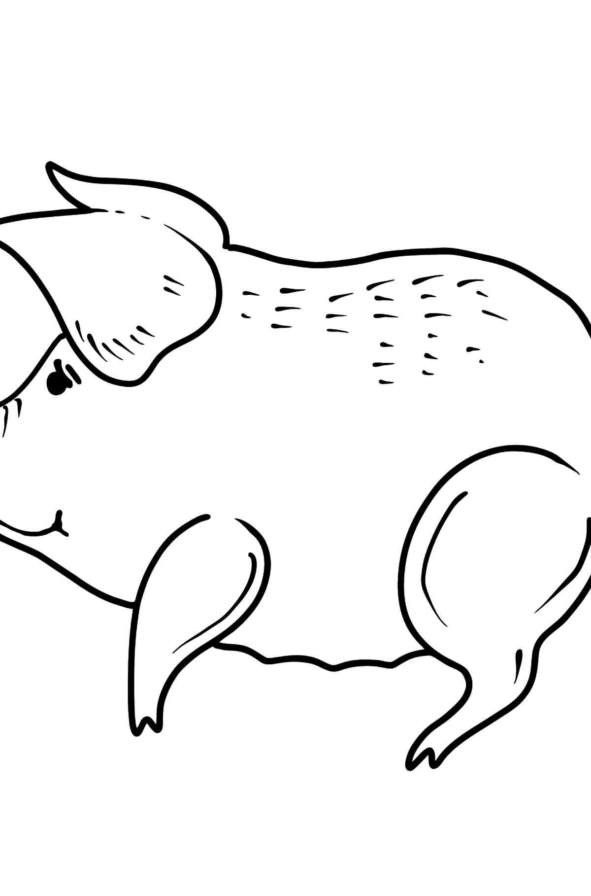 Pig coloring page - Coloring Pages for Kids