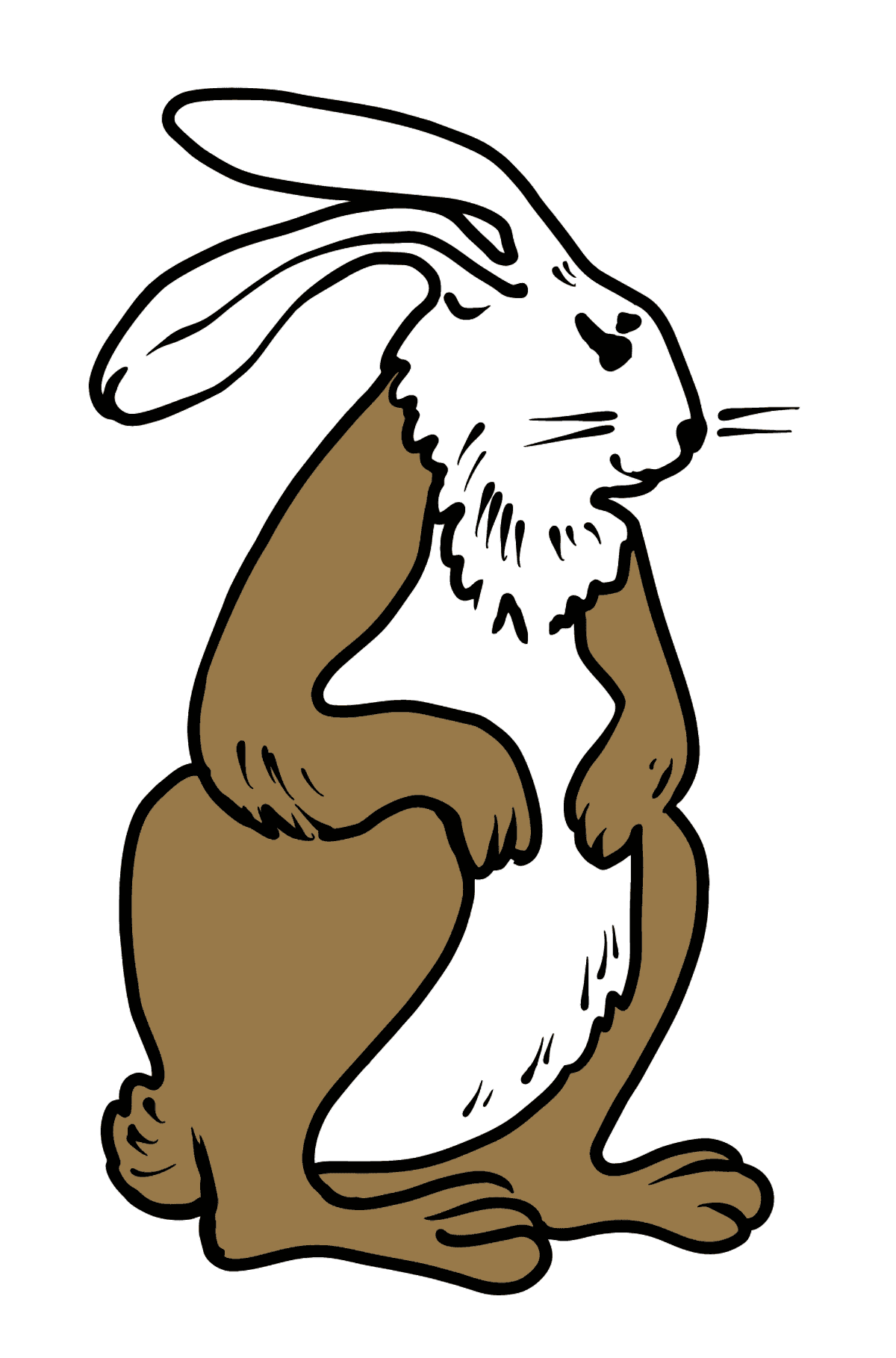 Rabbit coloring page - Coloring Pages for Kids