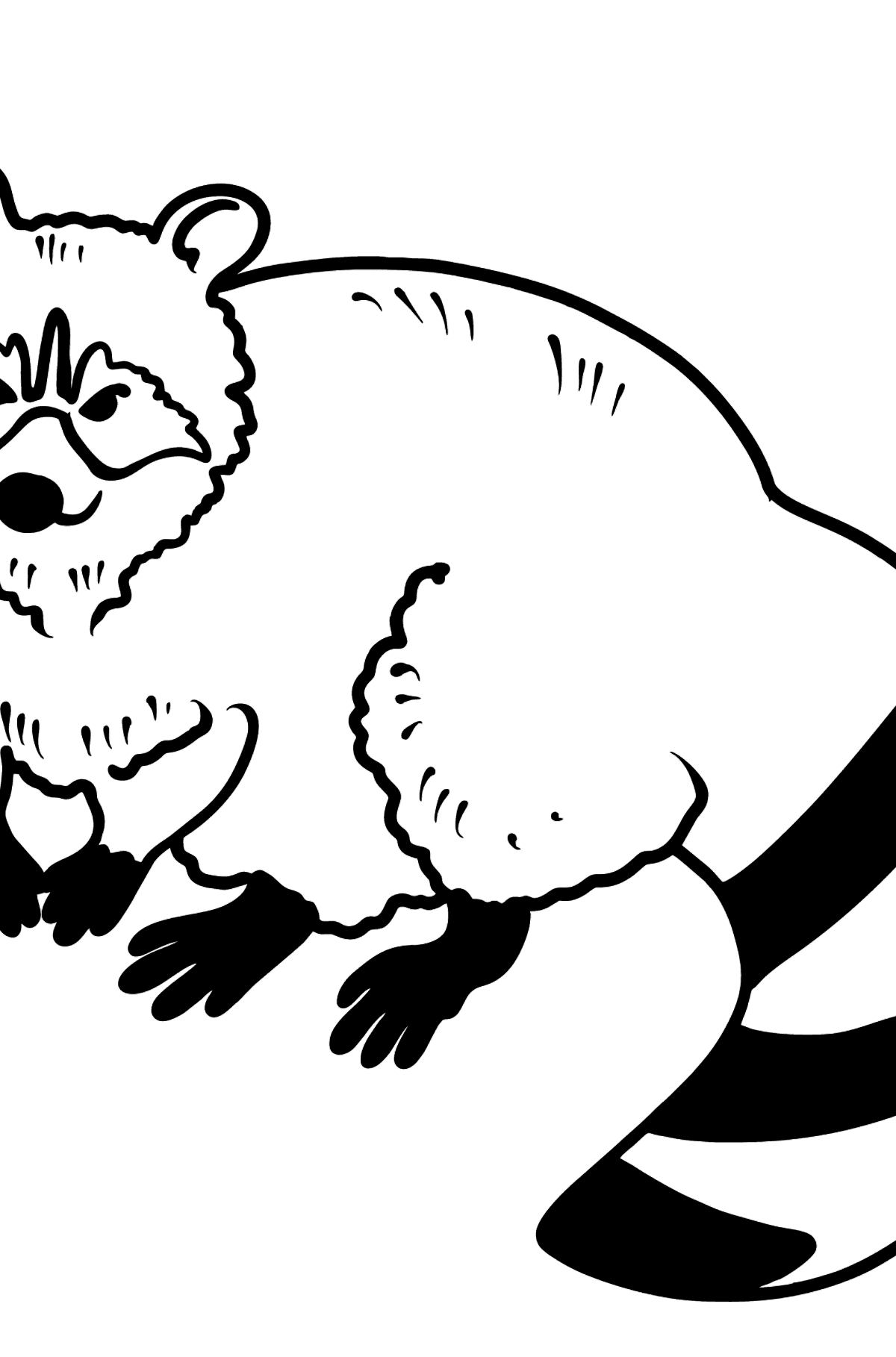 Raccoon coloring page - Coloring Pages for Kids