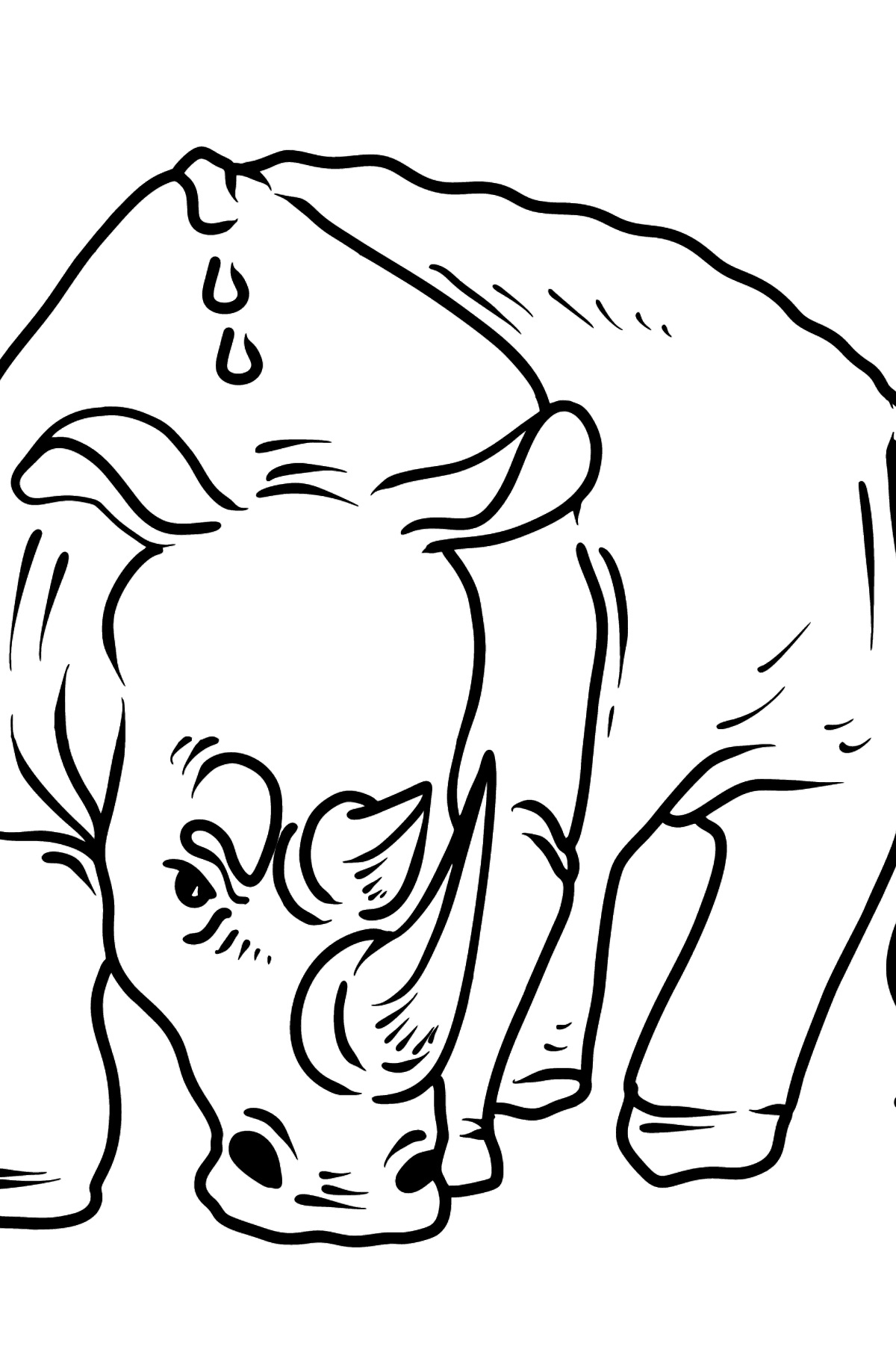 Rhino coloring page - Coloring Pages for Kids