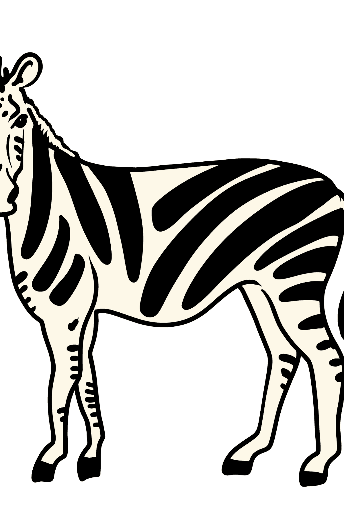 Zebra coloring page - Coloring Pages for Kids