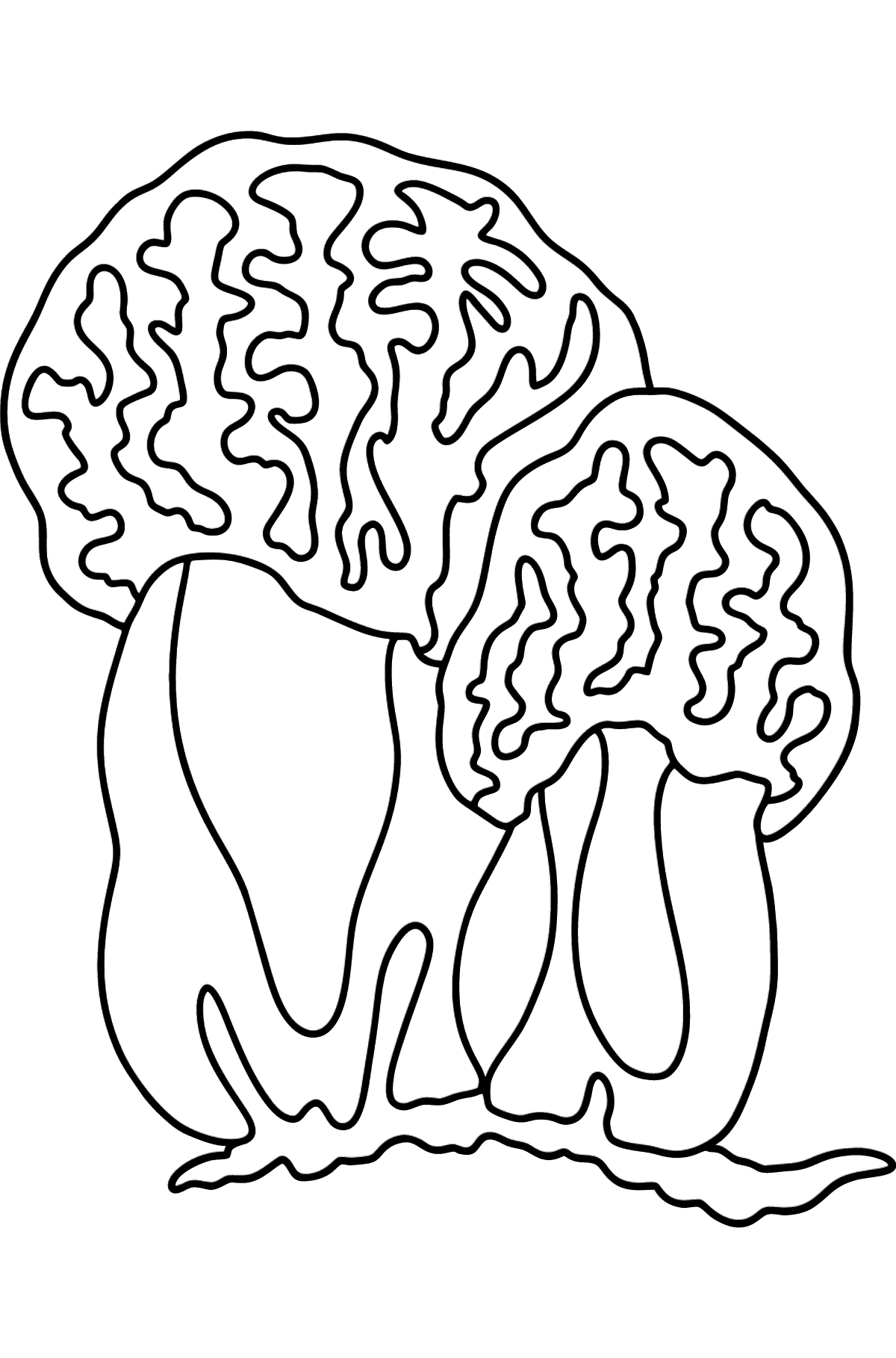 Morel coloring page - Coloring Pages for Kids