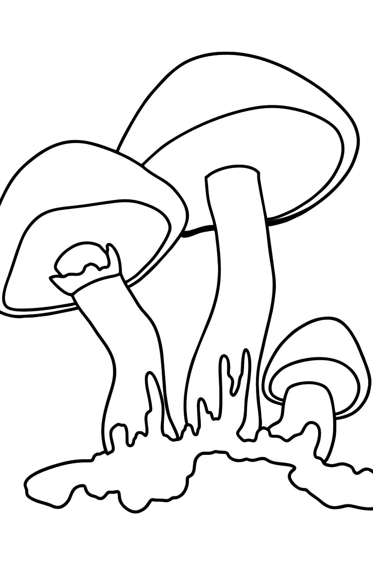 Раскраска масленок - Картинки для Детей