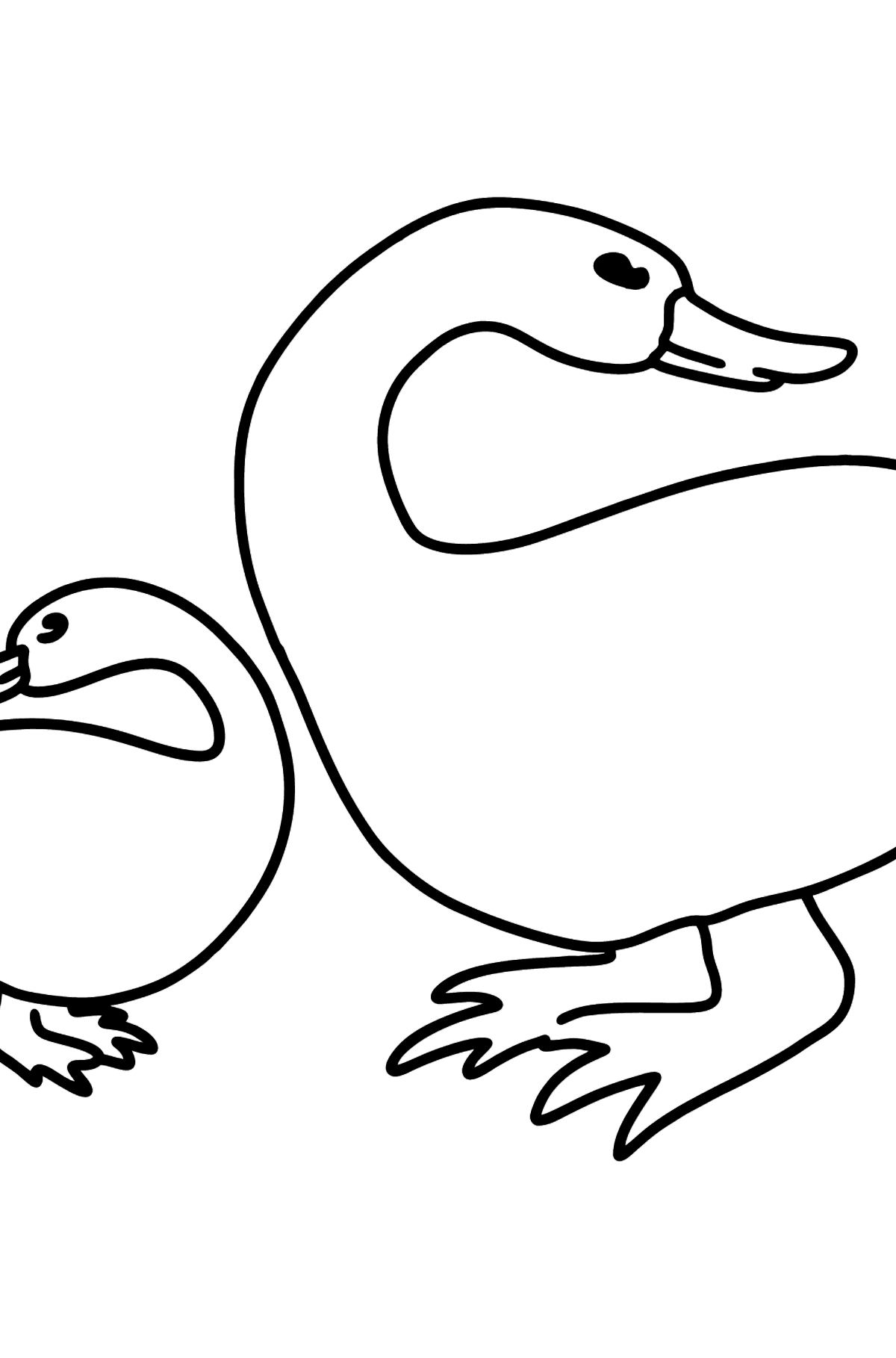 Duck with Duckling coloring page - Coloring Pages for Kids