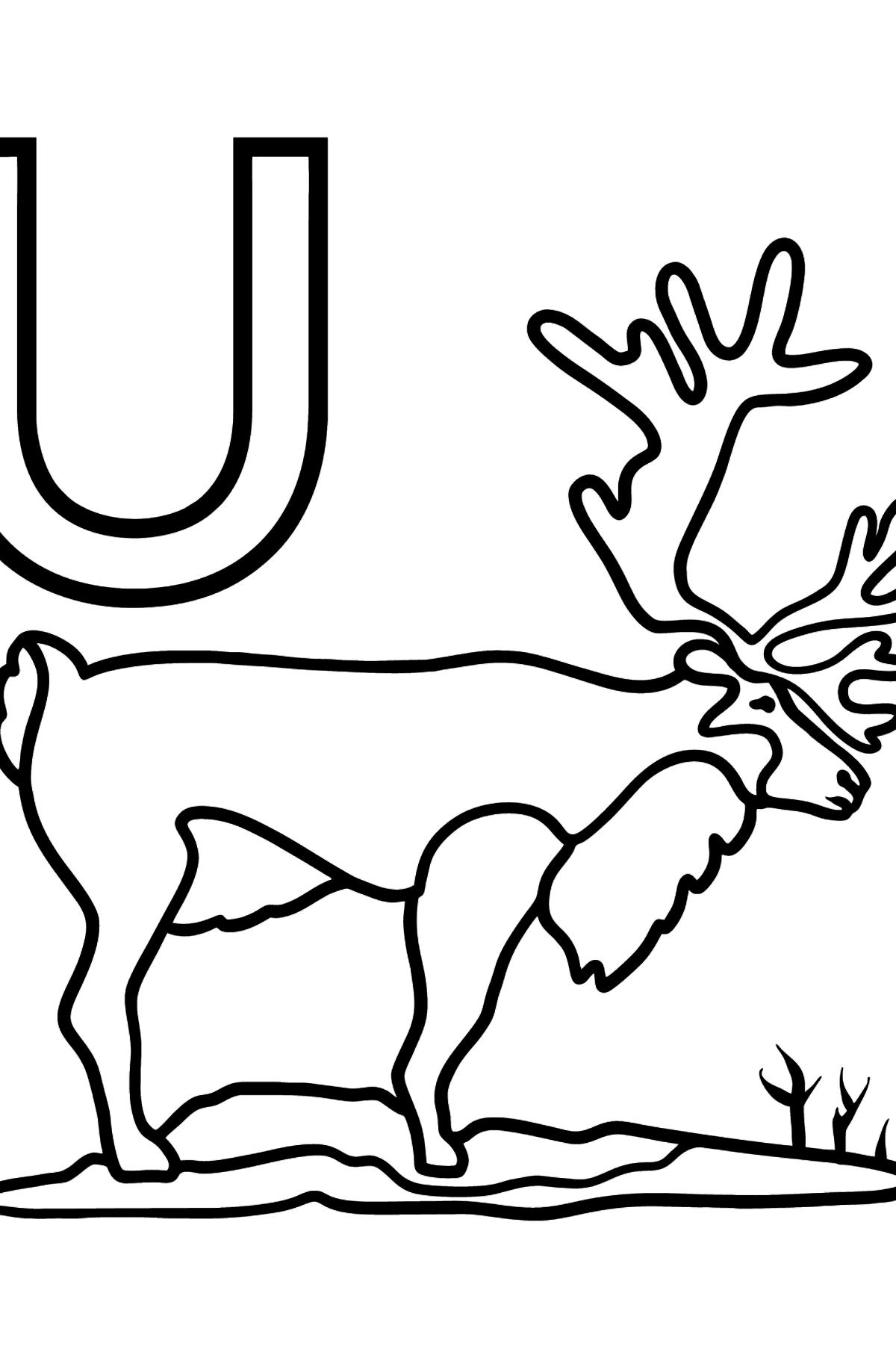 Раскраска буквы U испанского алфавита - UAPITI - Картинки для Детей