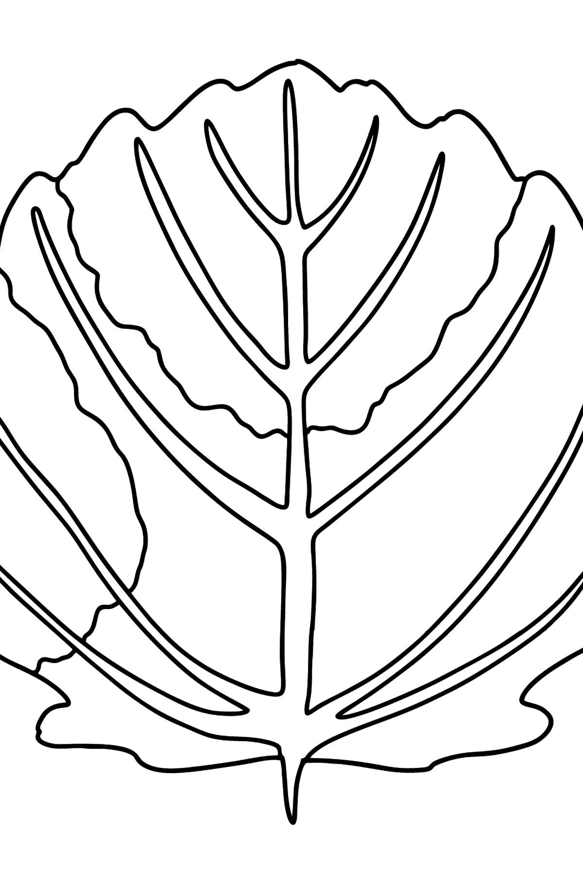 Раскраска лист осины - Картинки для Детей