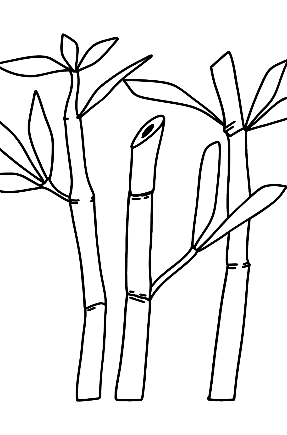Bamboo coloring page - difficult - Coloring Pages for Kids
