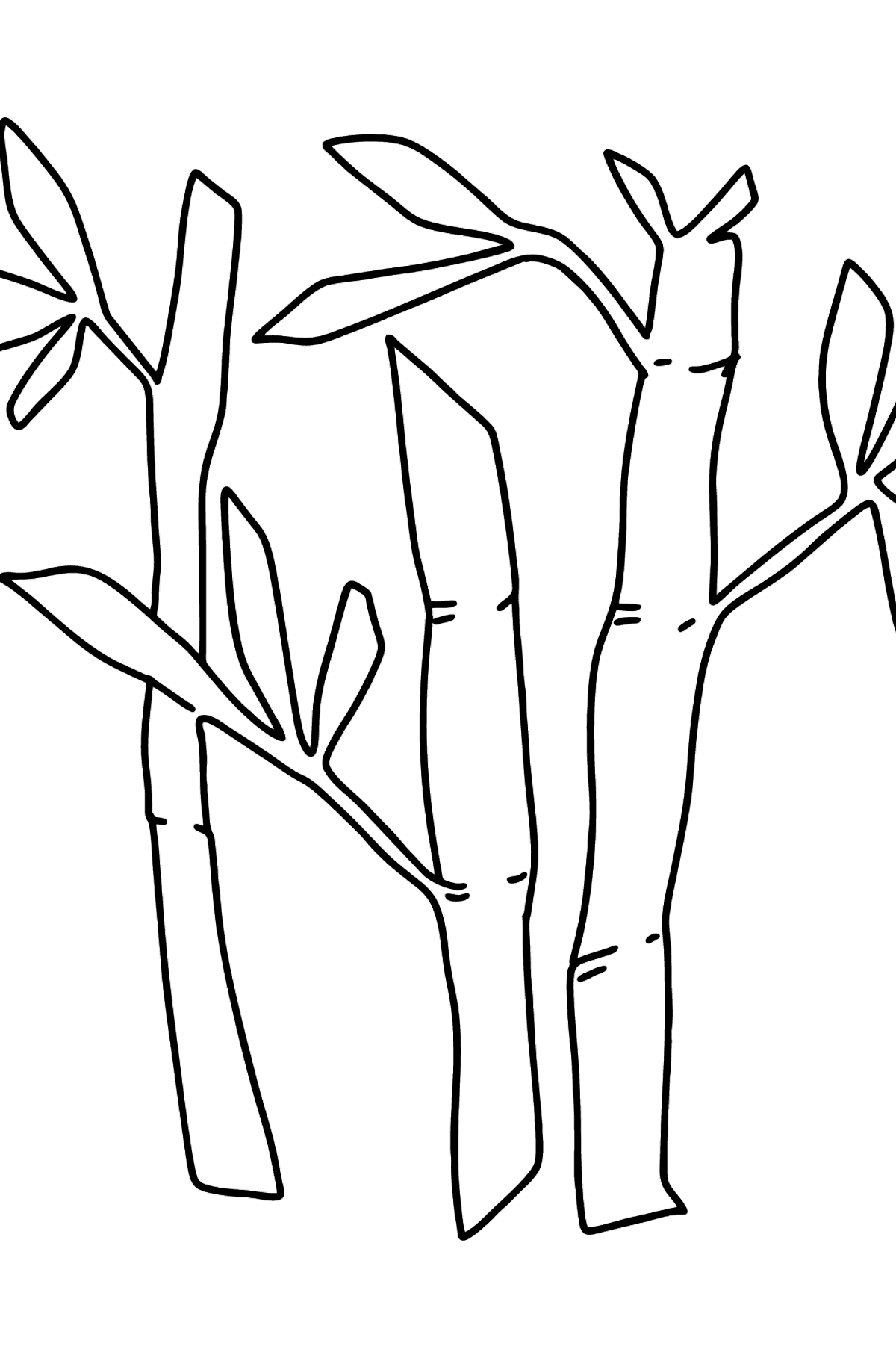 Bamboo coloring page - simple - Coloring Pages for Kids