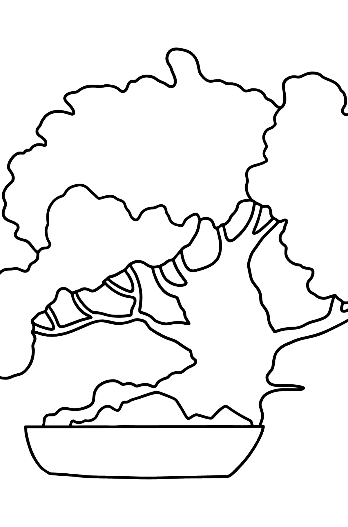 Bonsai coloring page - Coloring Pages for Kids