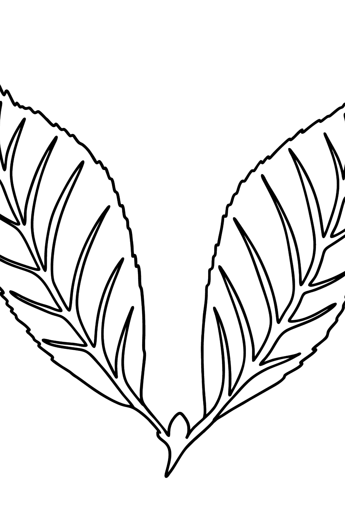 Cherry Leaf coloring page - Coloring Pages for Kids