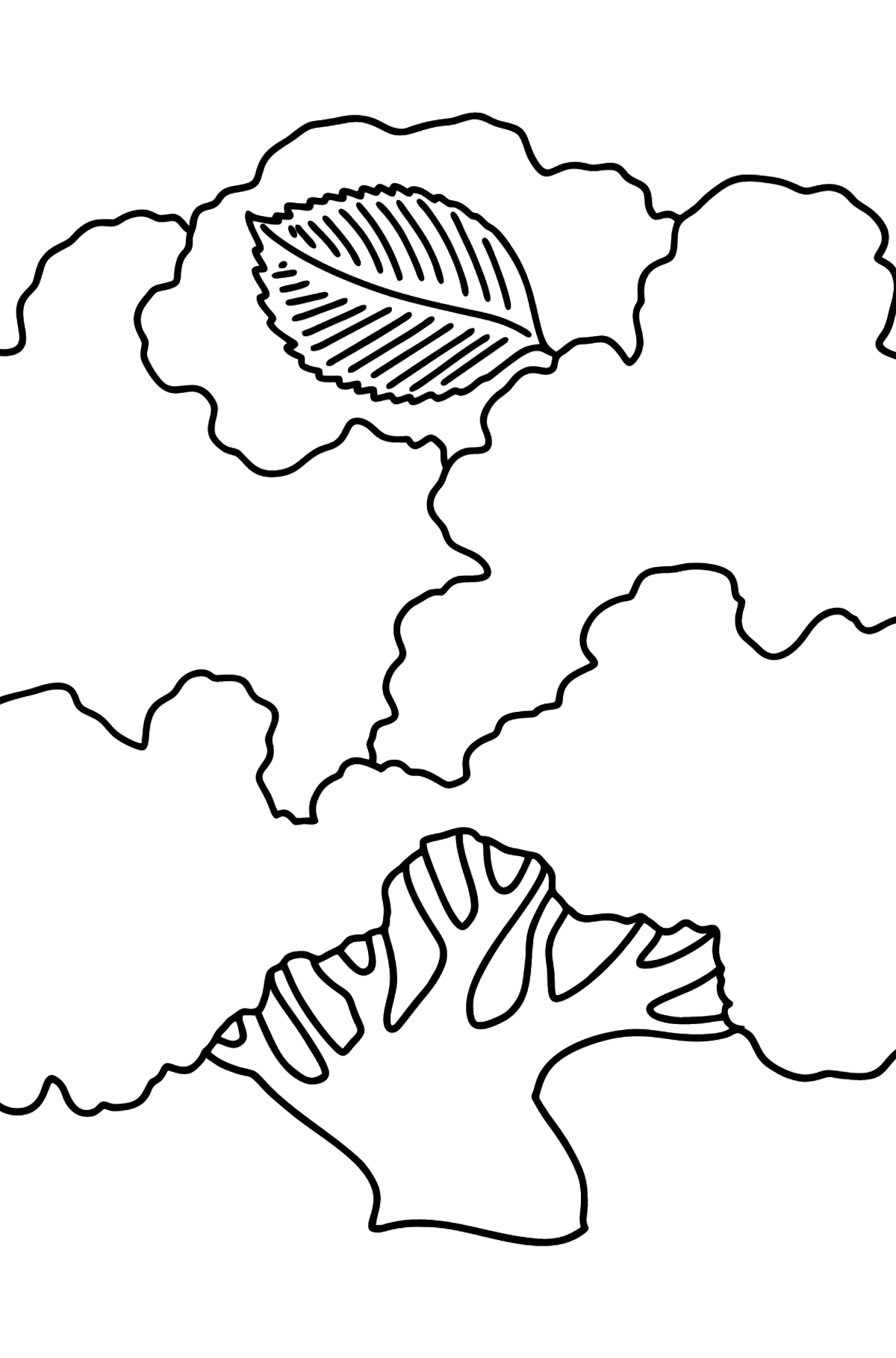 Elm coloring page - Coloring Pages for Kids