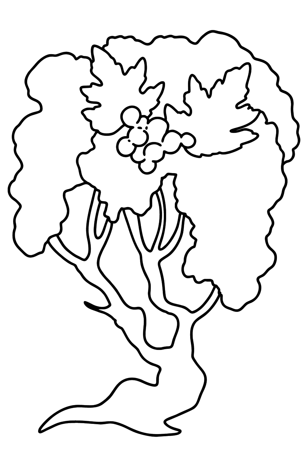 Hawthorn coloring page - Coloring Pages for Kids