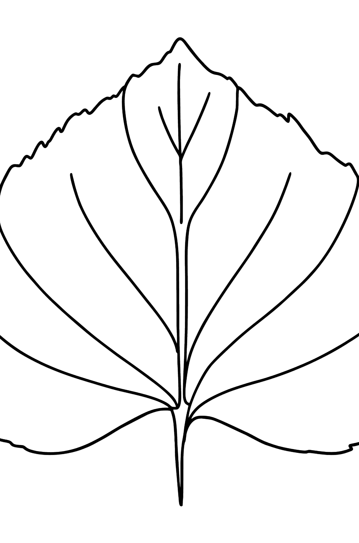 Linden Leaf coloring page - Coloring Pages for Kids