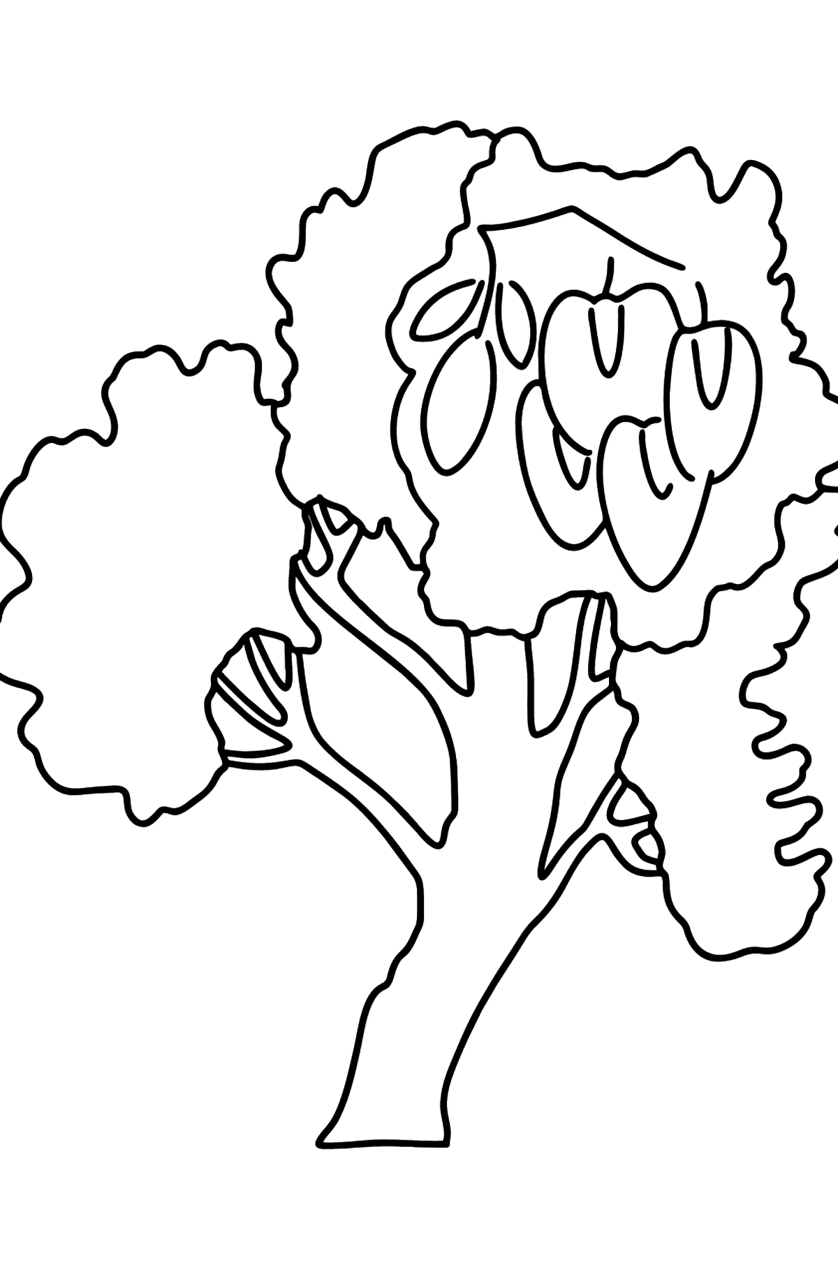 Locust tree (Robinia Pseudoacacia) coloring page - Coloring Pages for Kids