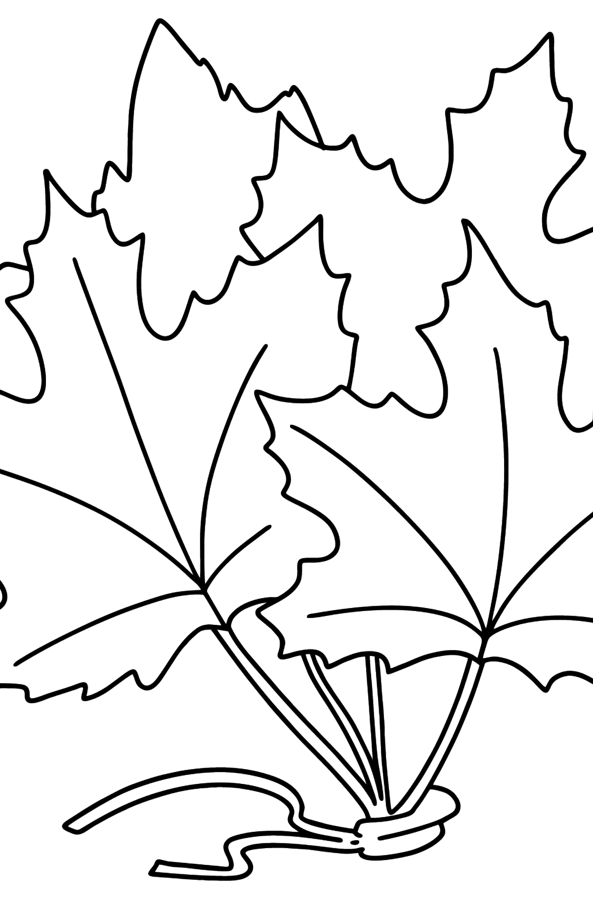 Maple Bouquet coloring page - Coloring Pages for Kids