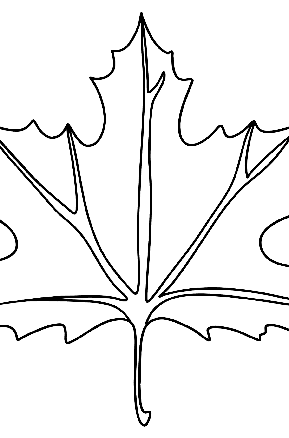 Maple Leaf coloring page - Coloring Pages for Kids