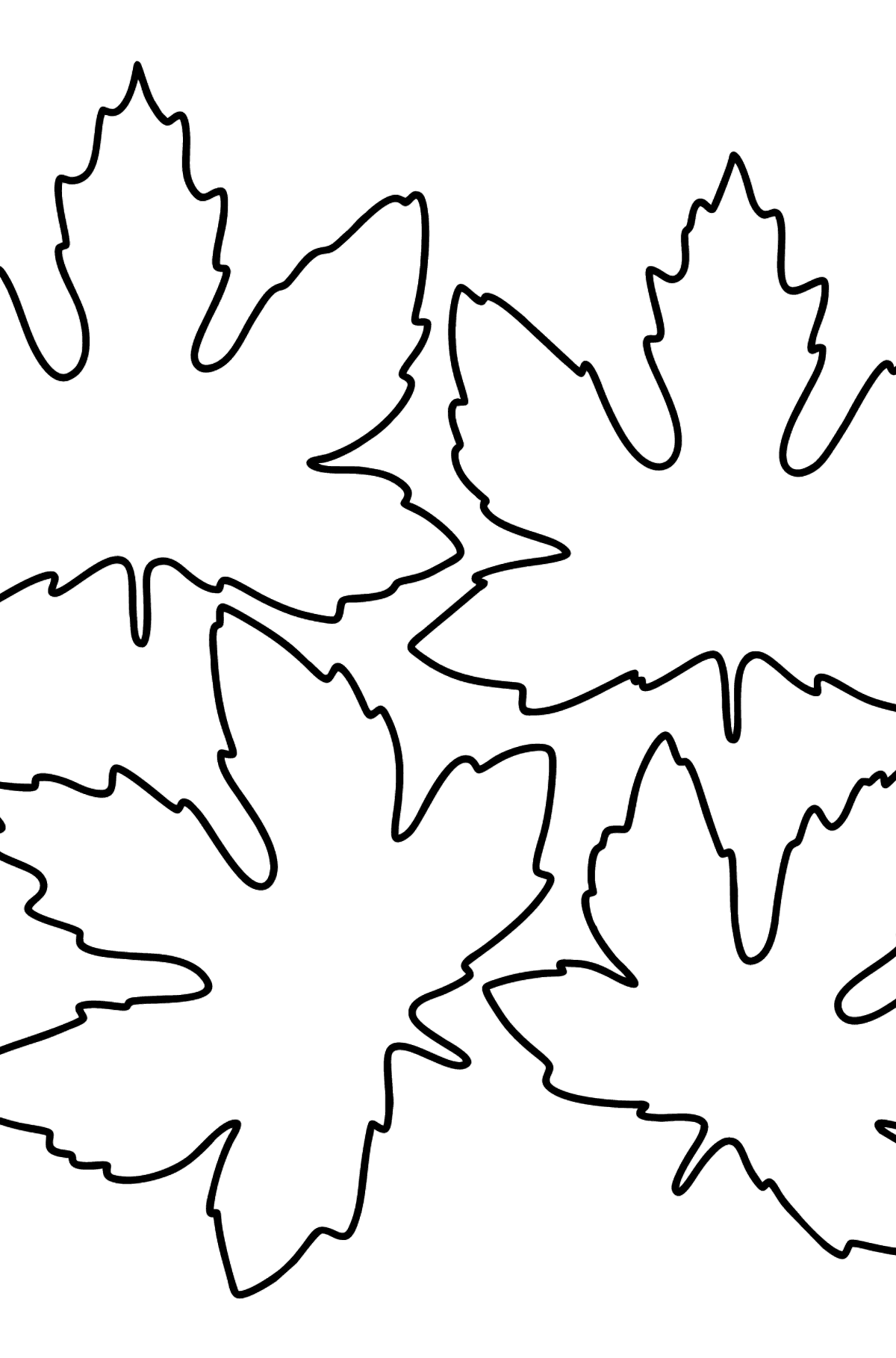 Maple Leaves coloring page - Coloring Pages for Kids