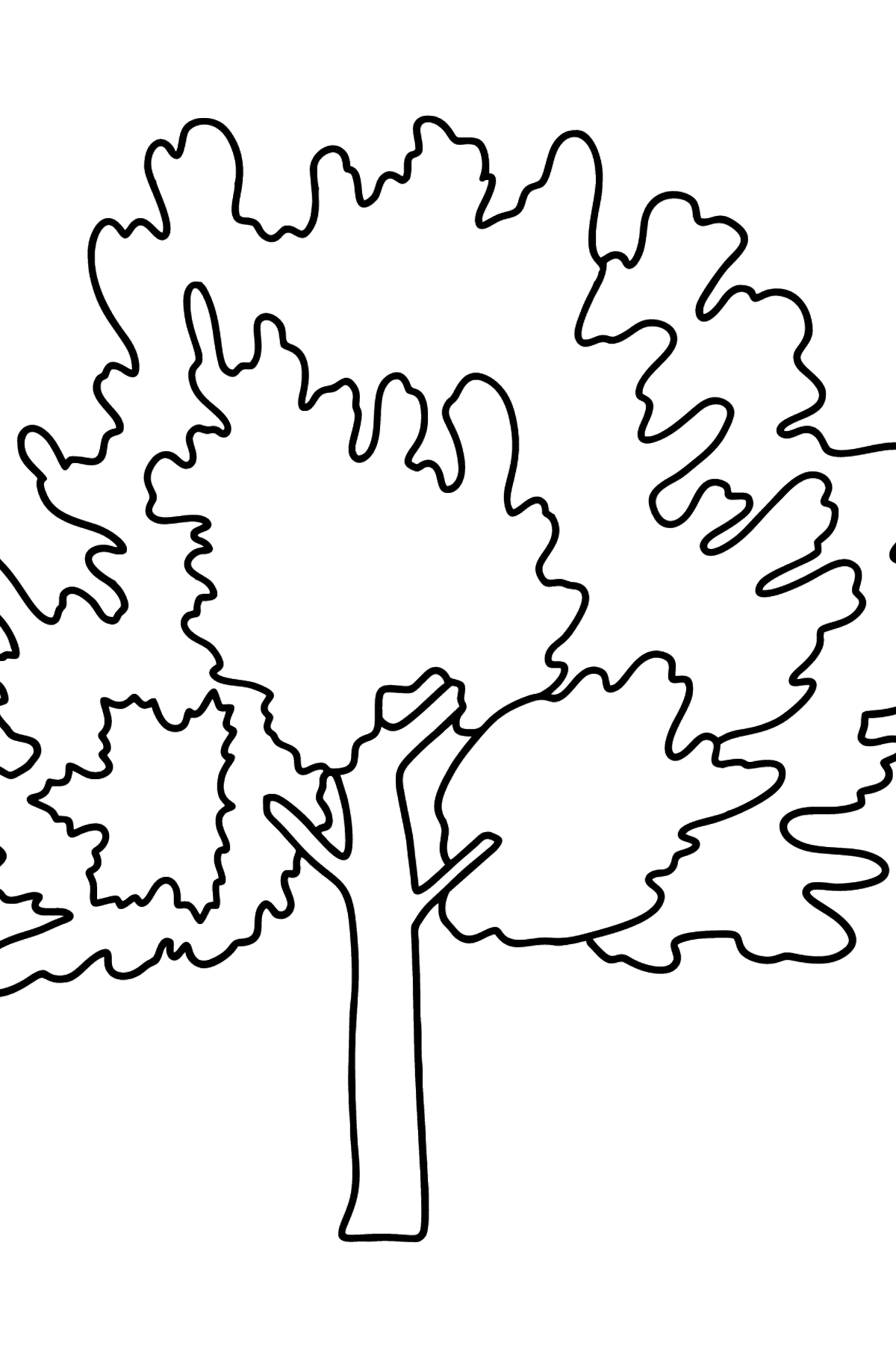 Maple coloring page - Coloring Pages for Kids