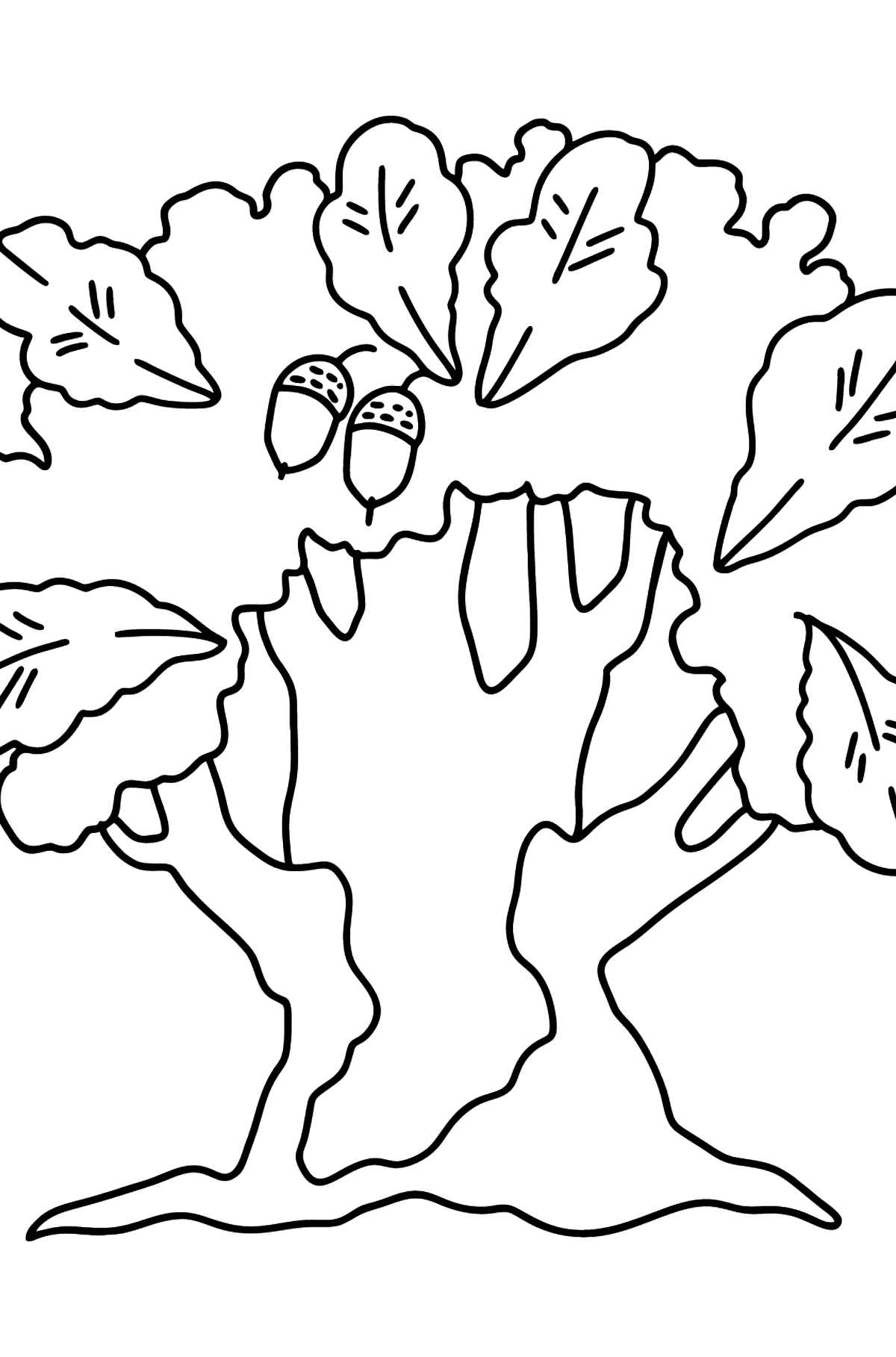 Oak coloring page - Difficult - Coloring Pages for Kids