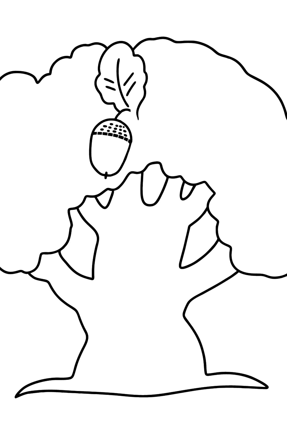 Oak coloring page - Simple  - Coloring Pages for Kids