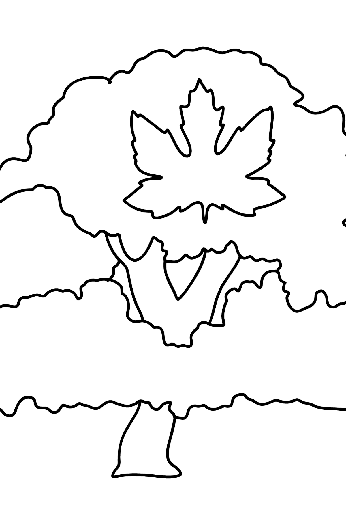 Red Maple coloring page - Coloring Pages for Kids