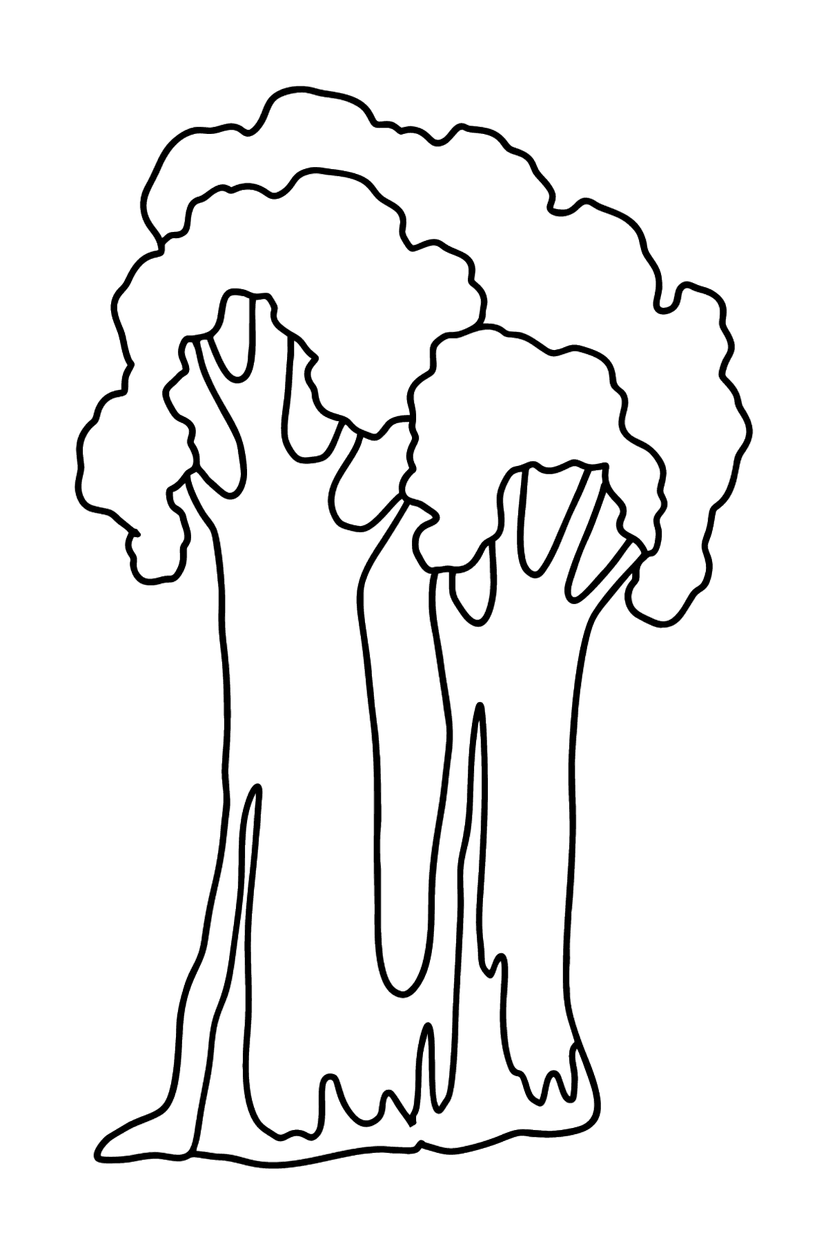 Sequoia coloring page - Coloring Pages for Kids