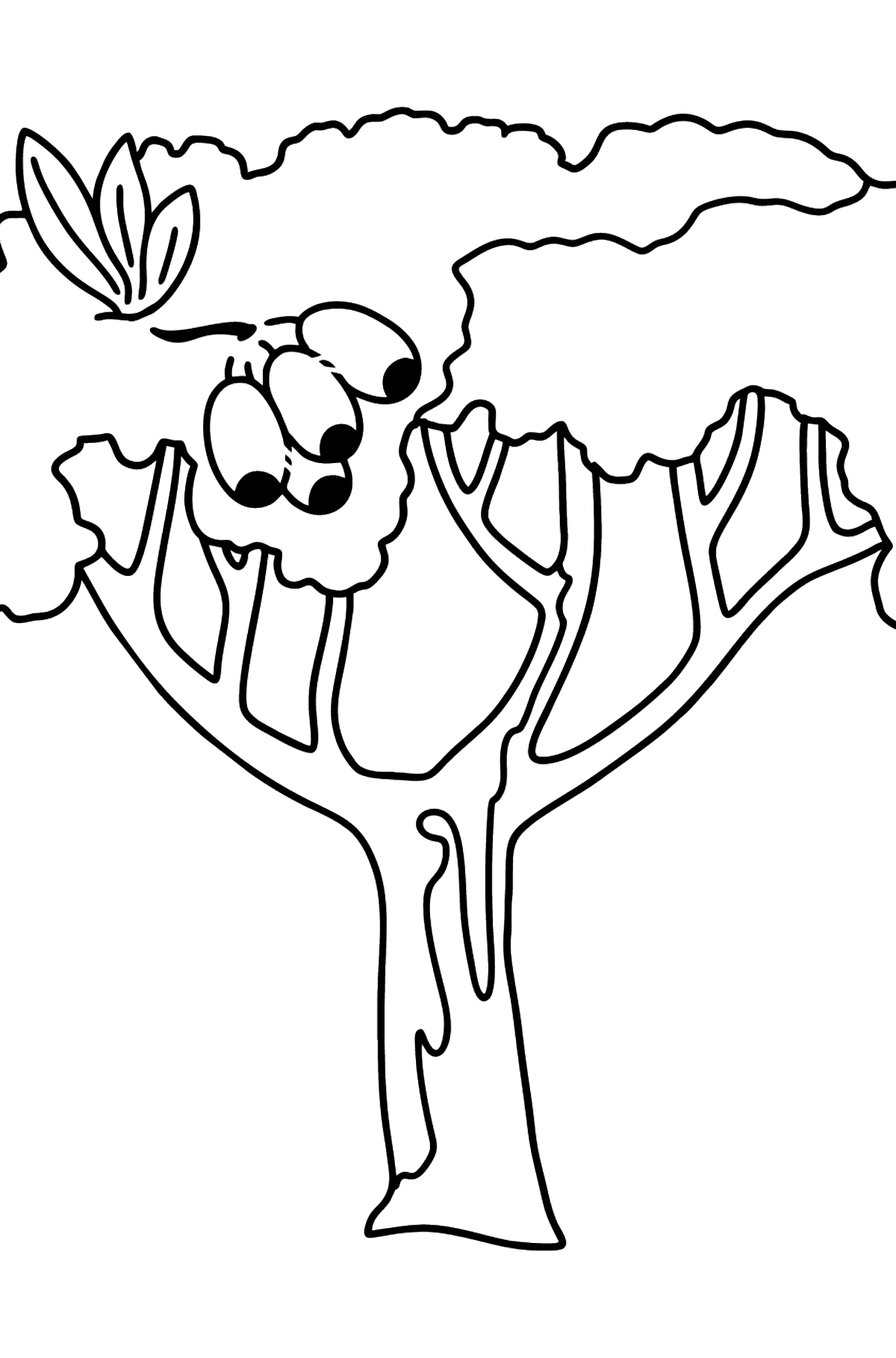 Gum tree - Corimbia coloring page - Coloring Pages for Kids