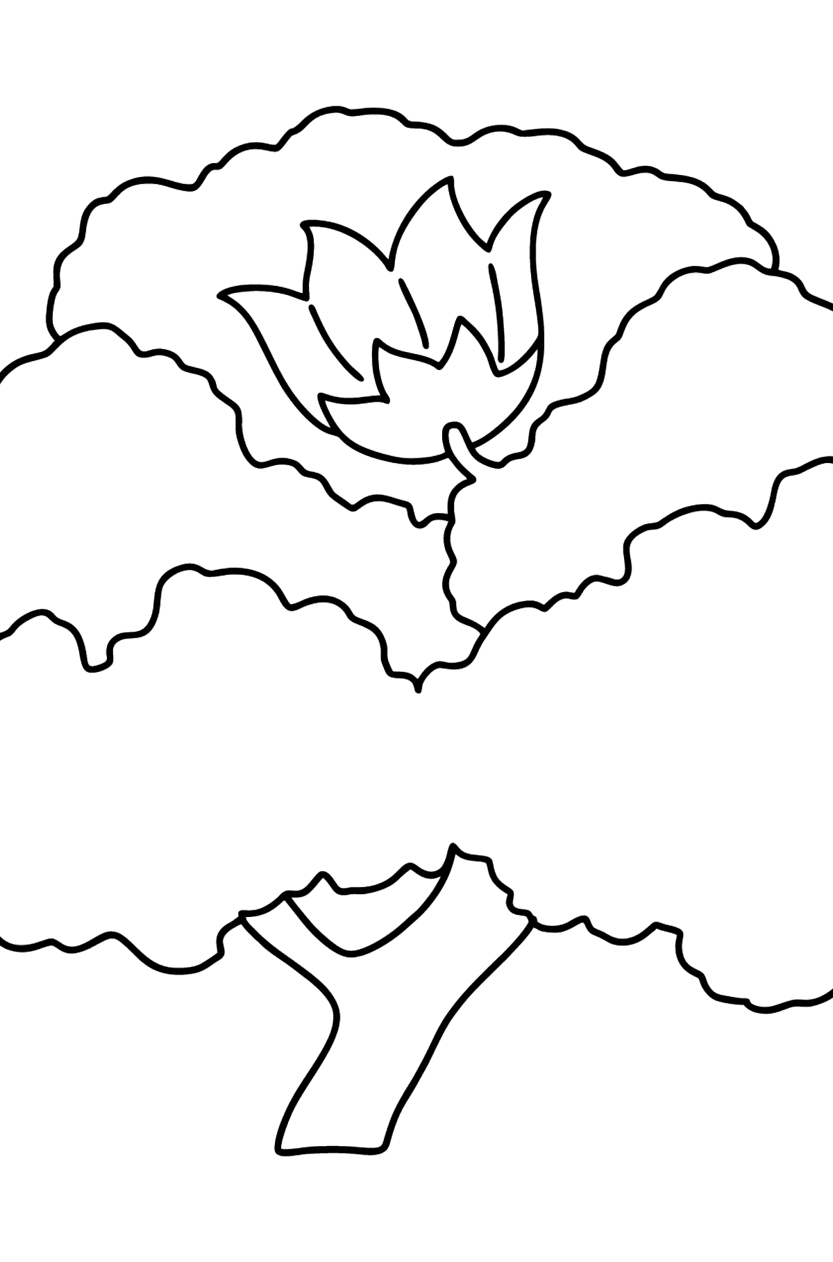 Tulip Tree coloring page - Coloring Pages for Kids
