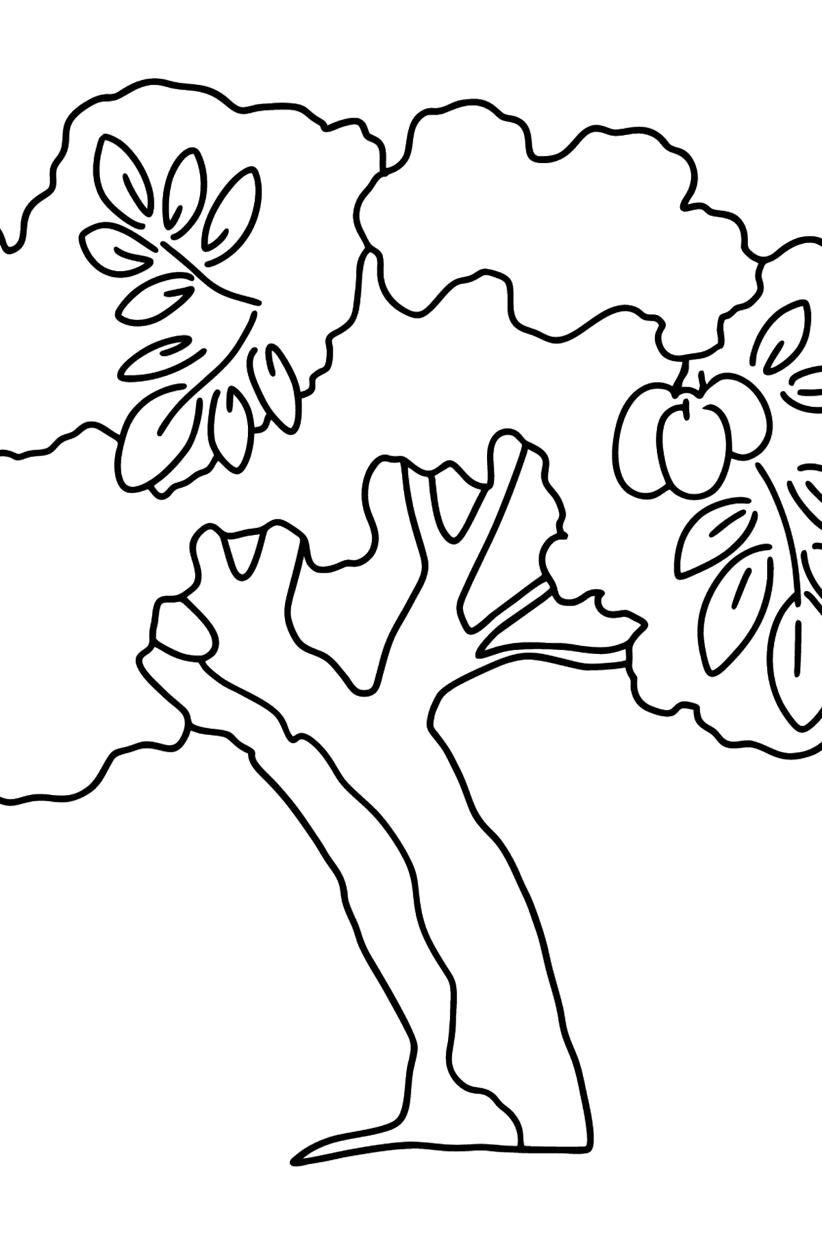 Walnut coloring page - Coloring Pages for Kids