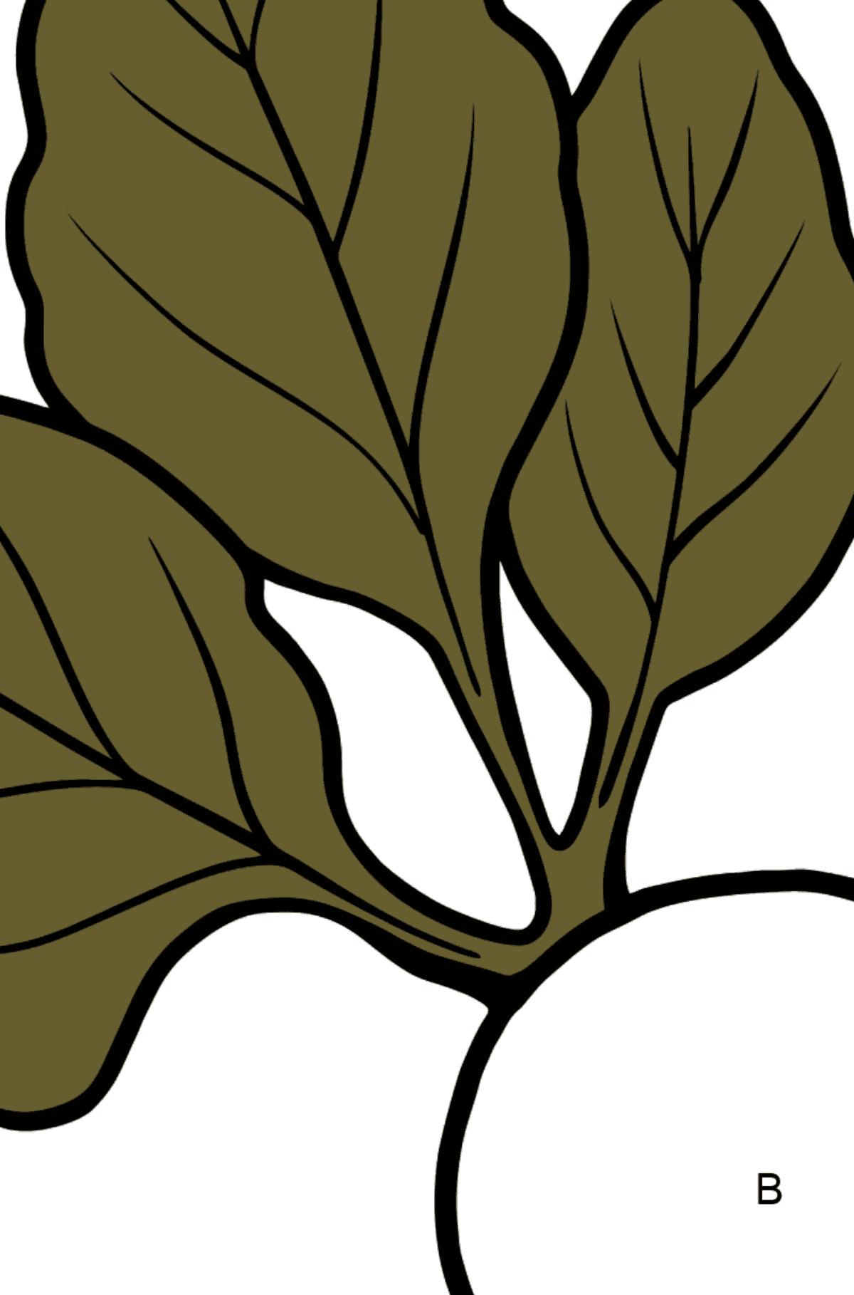 Beet coloring page - Coloring by Letters for Kids