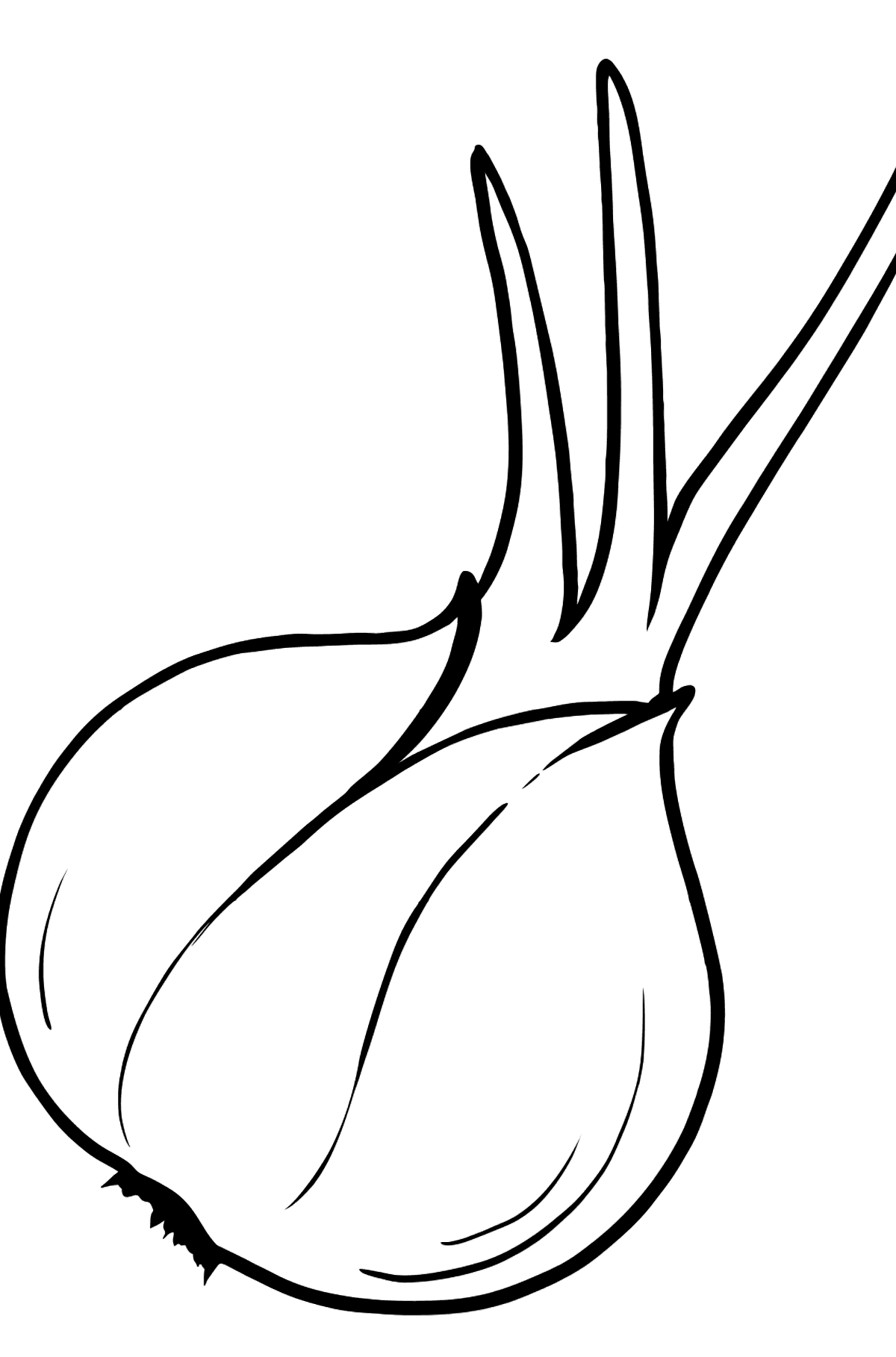 Onion coloring page - Coloring Pages for Kids
