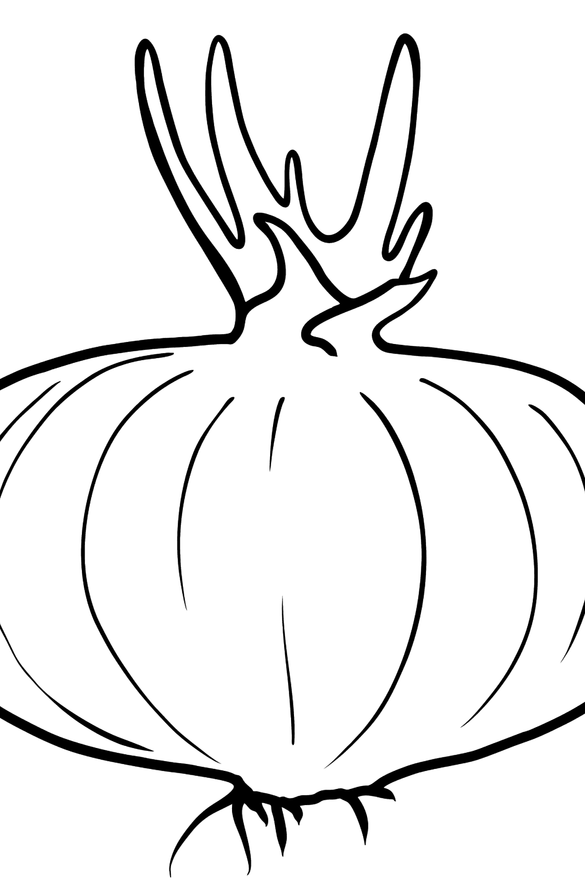 Red Onion coloring page - Coloring Pages for Kids